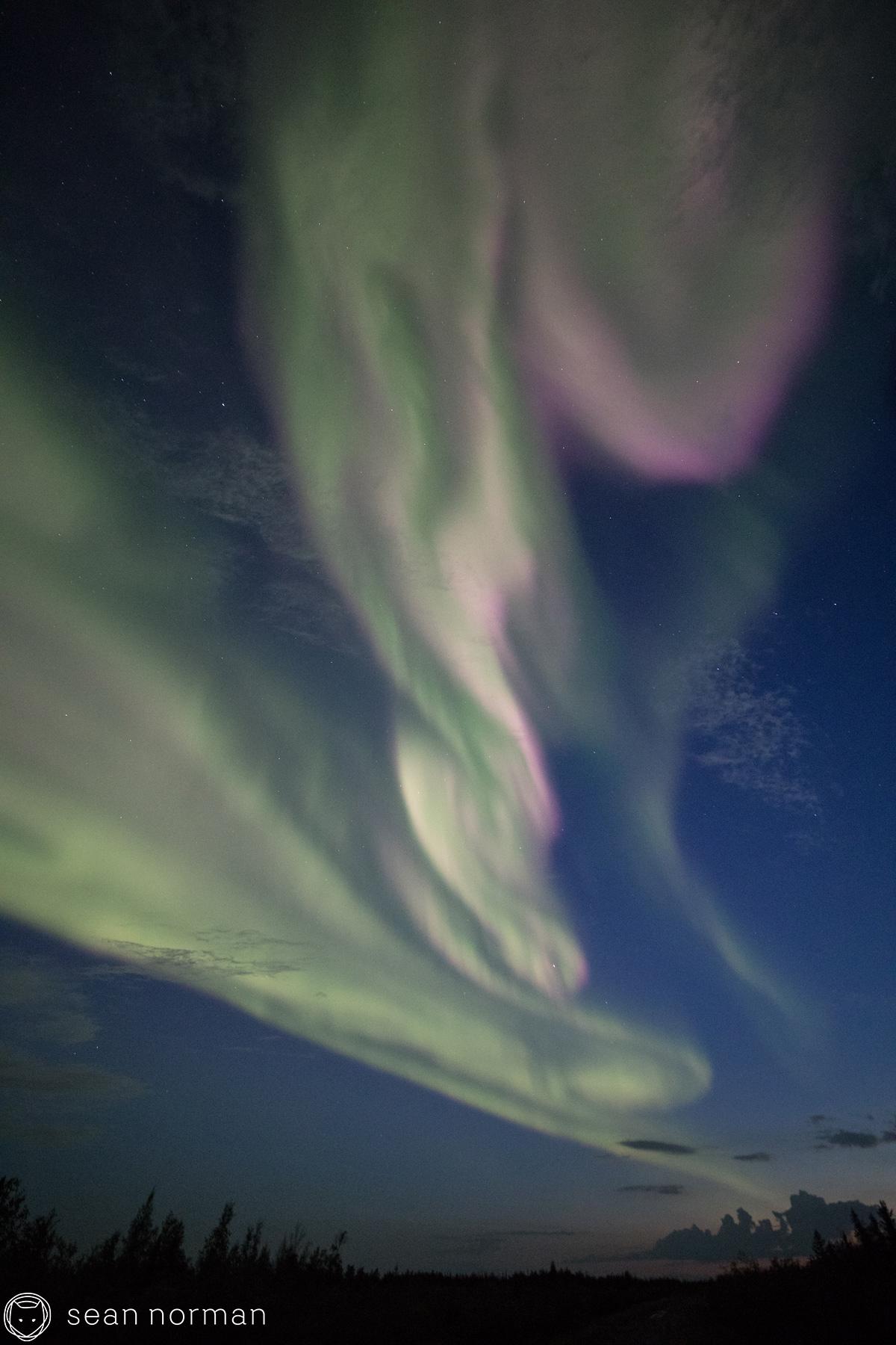 Yellowknife - Aurora Viewing Tour with Sean Norman - 2.jpg