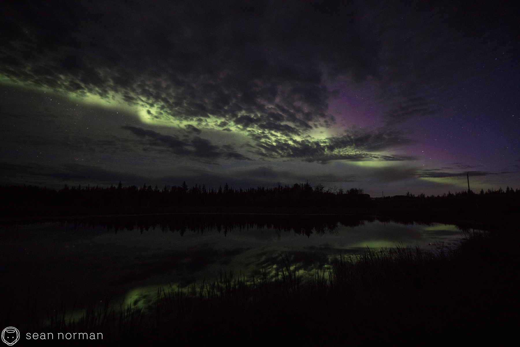 Sean Norman Yellowknife Aurora Guide - 1.jpg