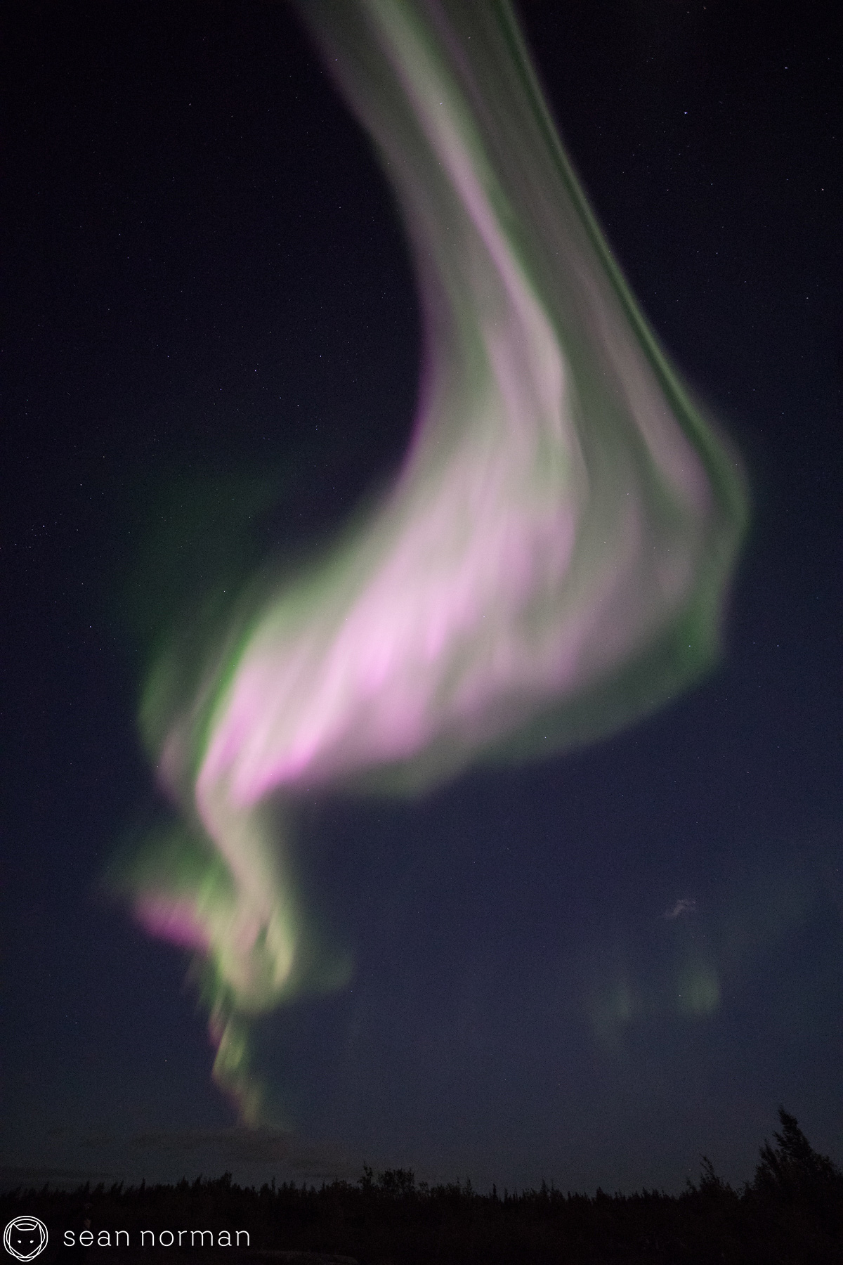 September Aurora Yellowknife - Sean Norman Blog - 3.jpg