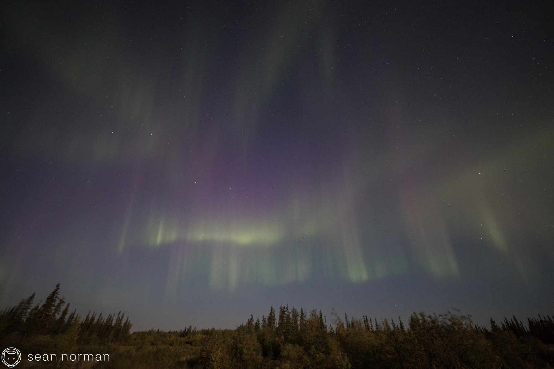Yellowknife Northern Lights Tour - Sean Norman Blog - 6.jpg