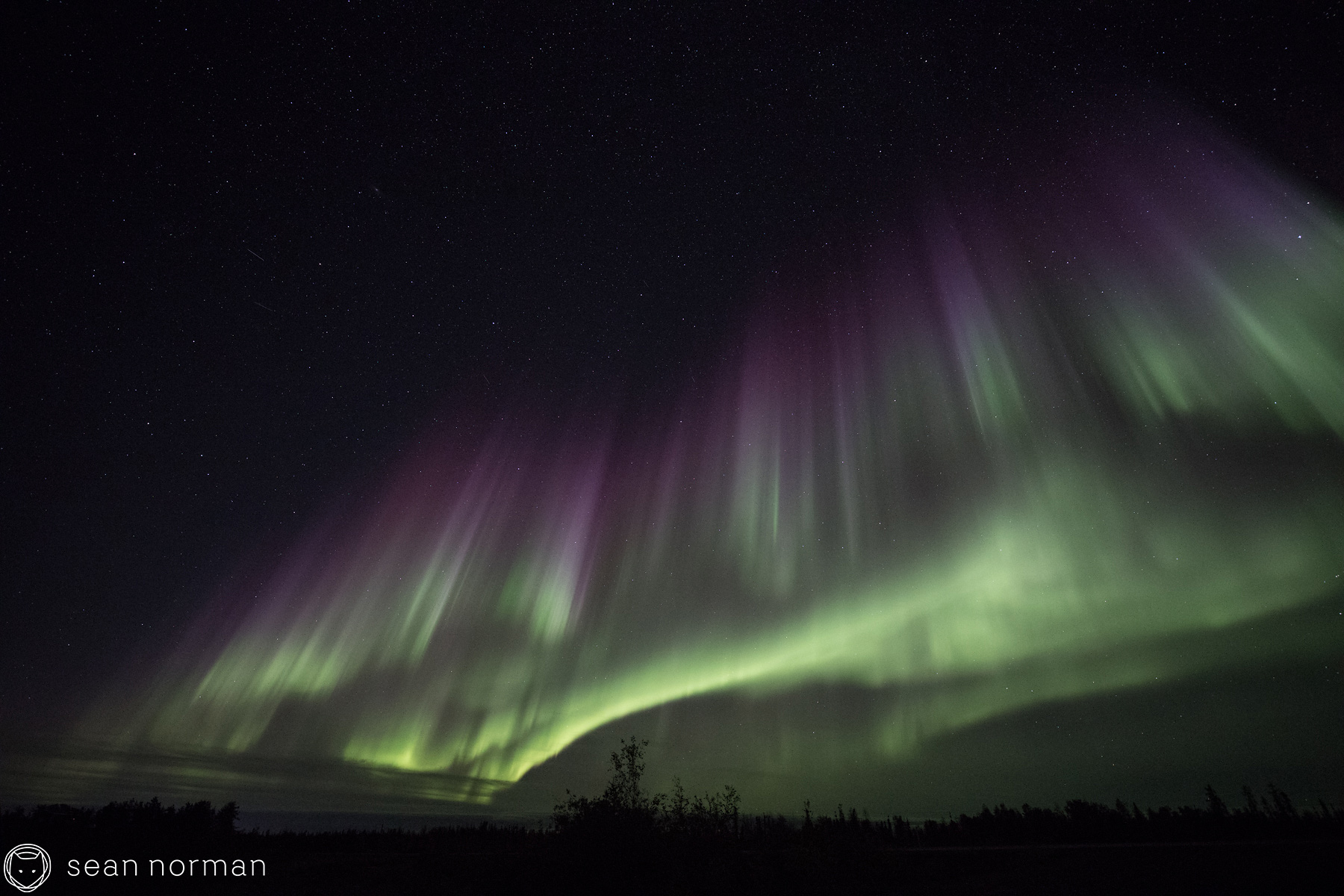 Yellowknife Aurora Tour - Sean Norman Aurora Chaser - 4.jpg
