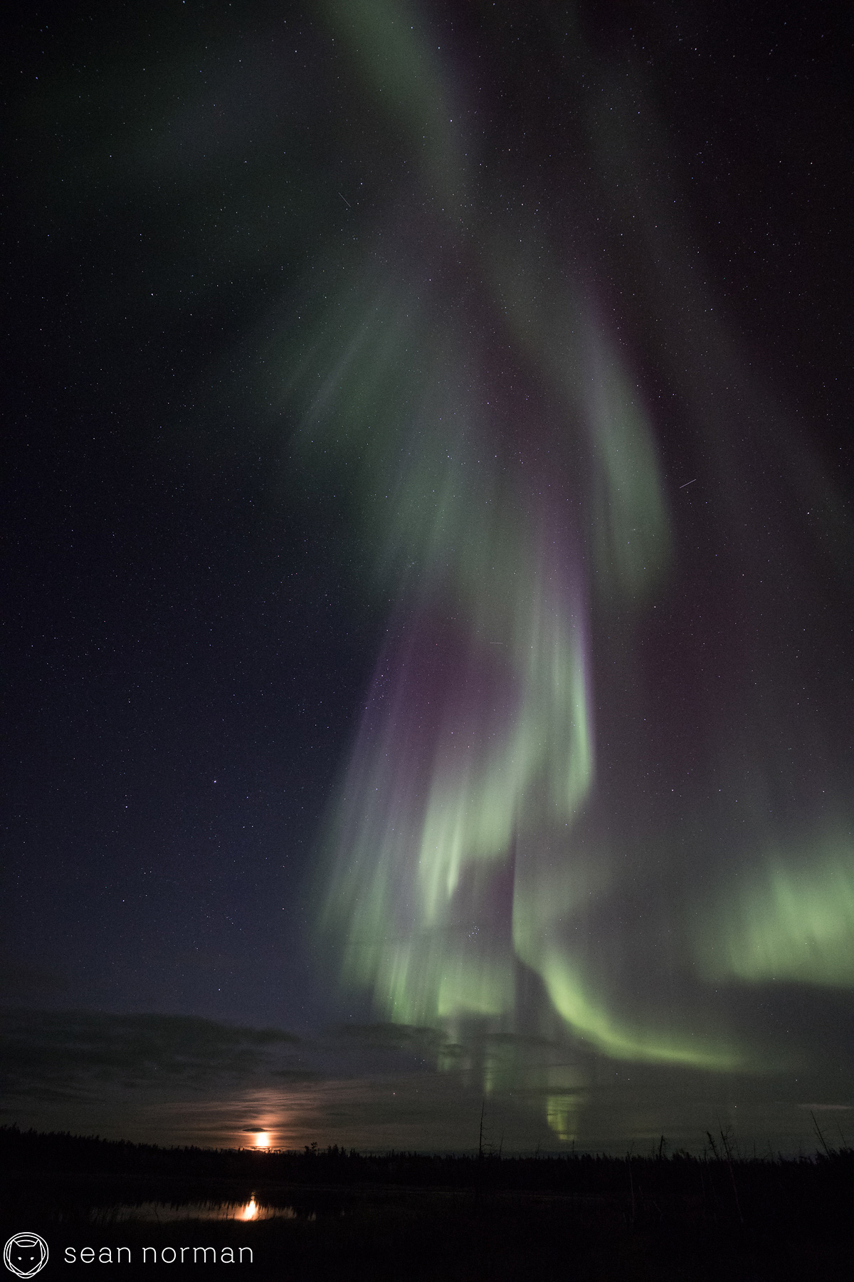 Yellowknife Aurora Tour - Sean Norman Aurora Chaser - 8.jpg