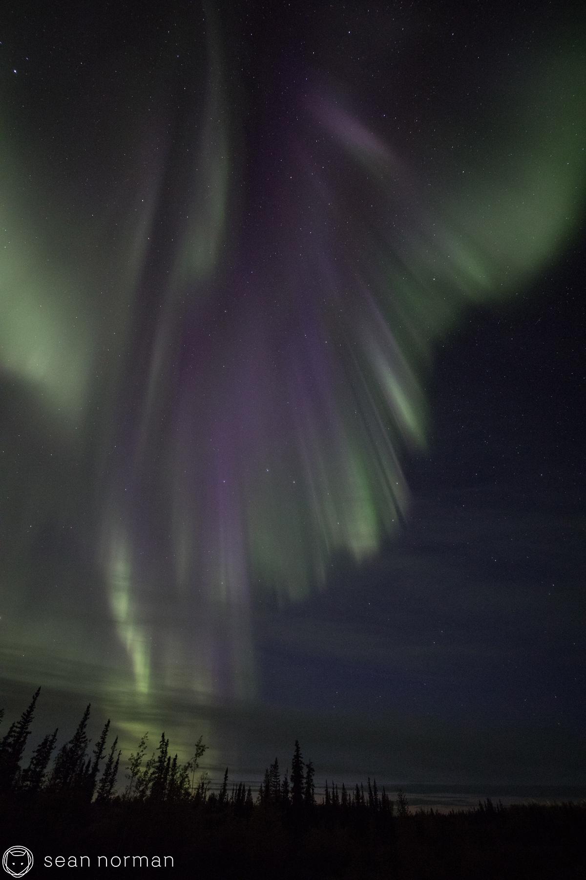 Yellowknife Aurora Blog - Sean Norman Guide - 3.jpg