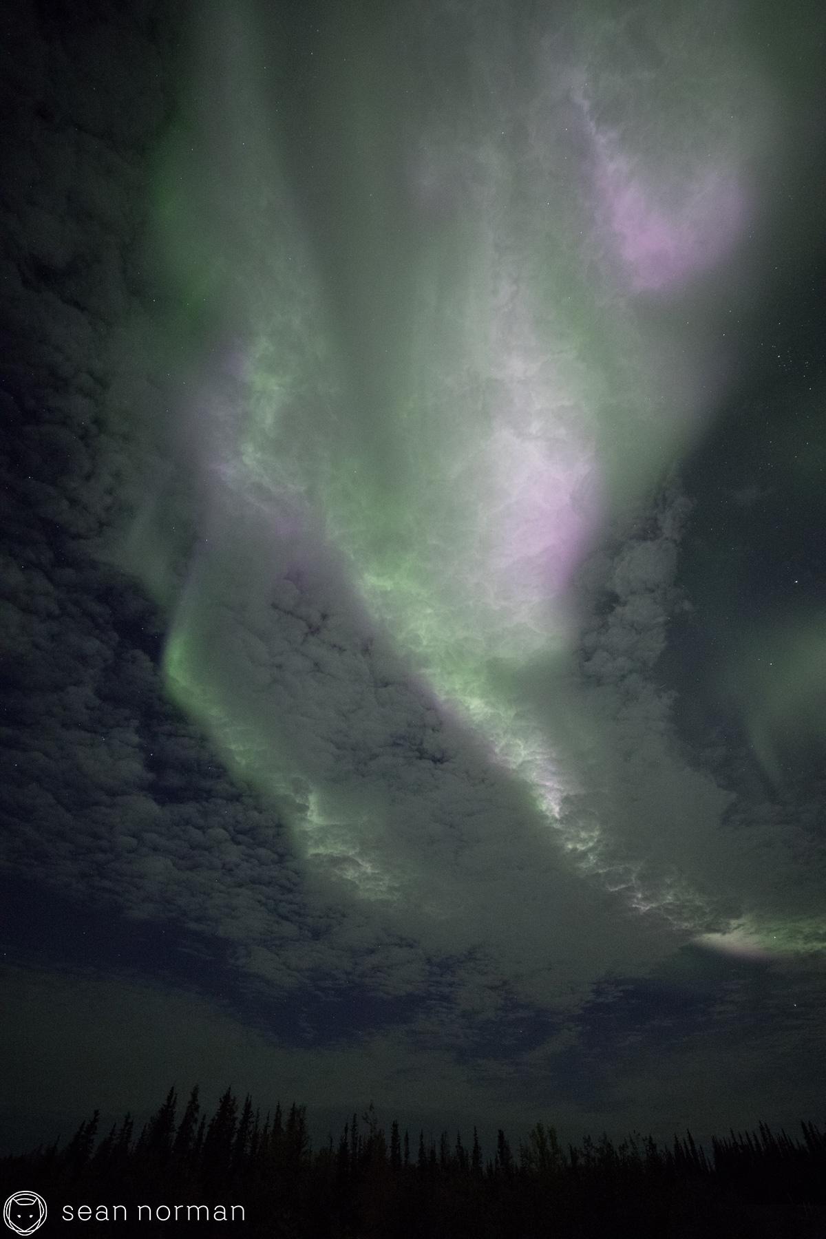 Yellowknife Aurora Blog - Sean Norman Guide - 8.jpg