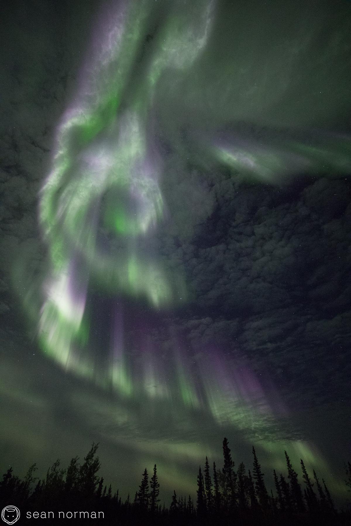 Yellowknife Aurora Blog - Sean Norman Guide - 9.jpg