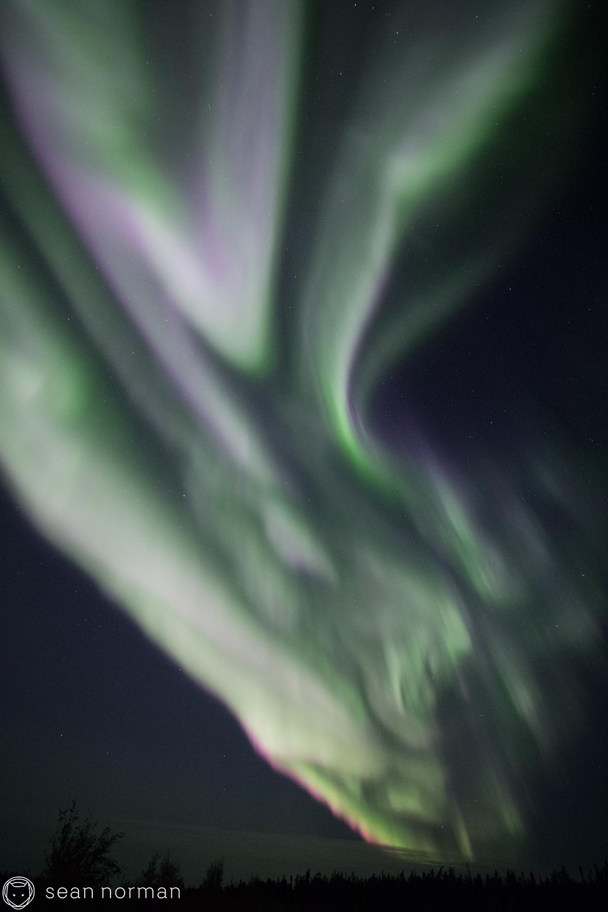 Yellowknife Aurora Borealis Blog - Northern Light Tour Guide - 9.jpg