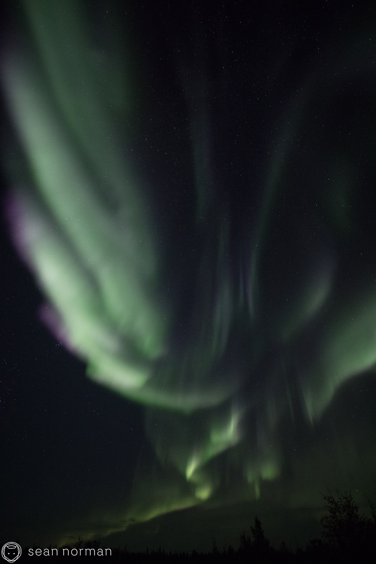 Sean Norman Yellowknife Aurora Tour Guide - 5.jpg
