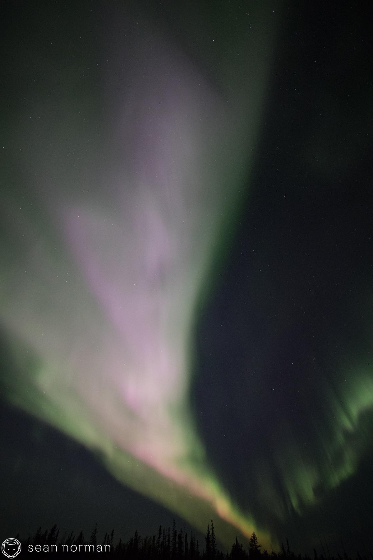 Sean Norman Yellowknife Aurora Tour Guide - 6.jpg
