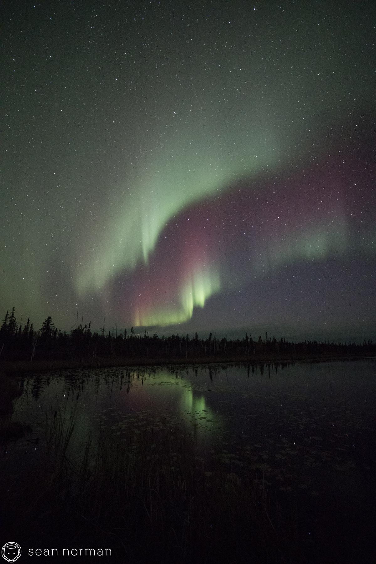 Yellowknife Aurora Photo Blog - Sean Norman Guide - 5.jpg