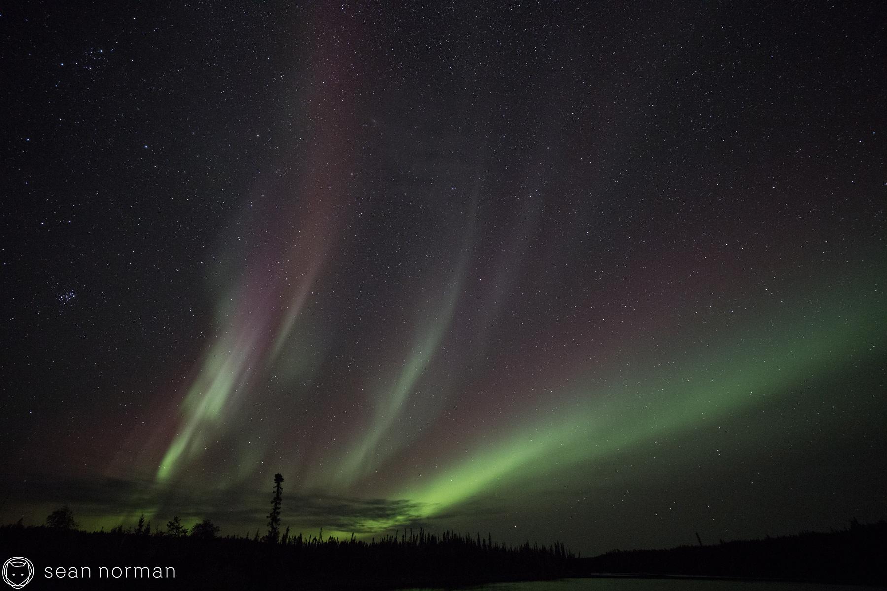 Yellowknife Aurora Borealis - Sean Norman Blog - 2.jpg