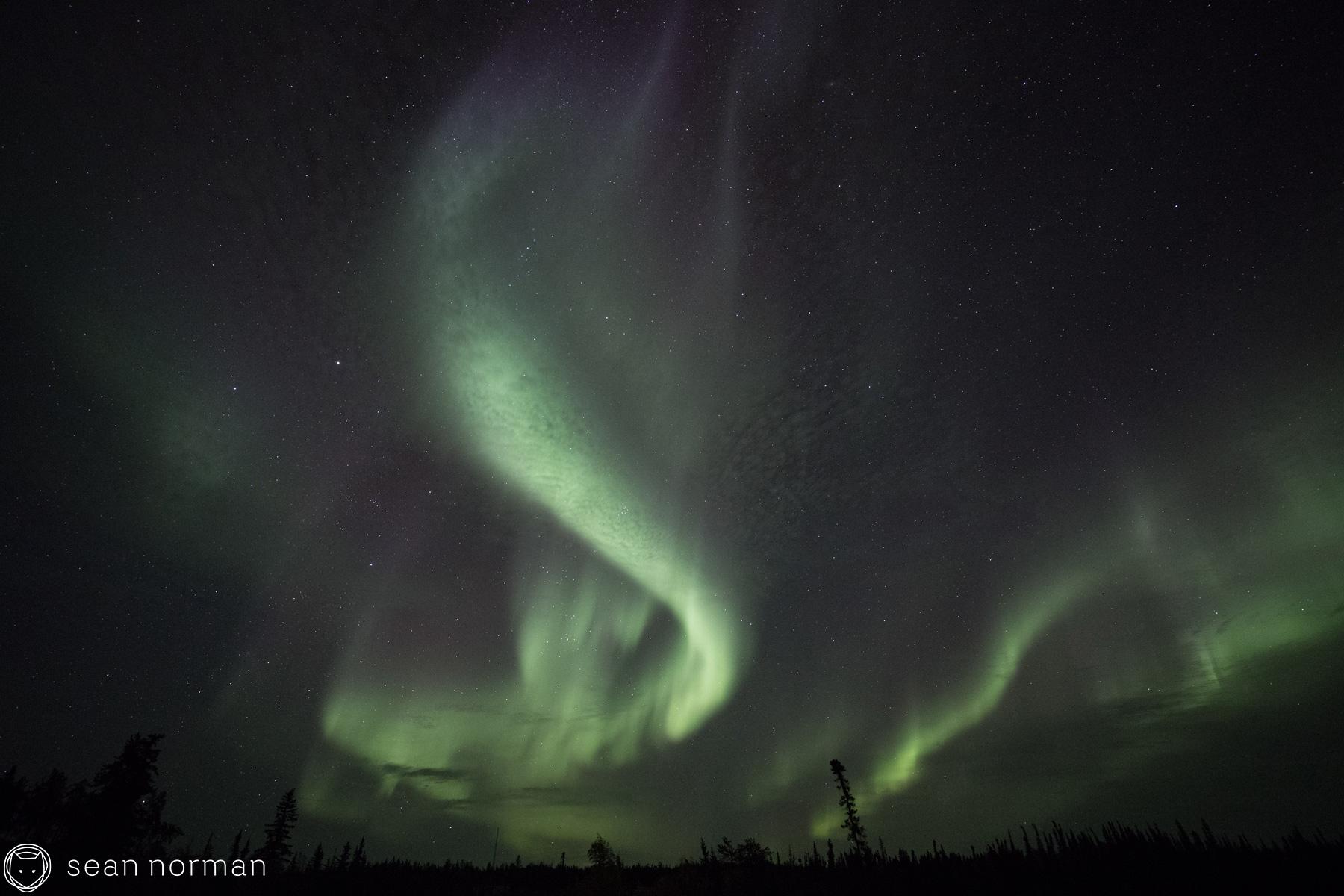 Yellowknife Aurora Borealis - Sean Norman Blog - 4.jpg