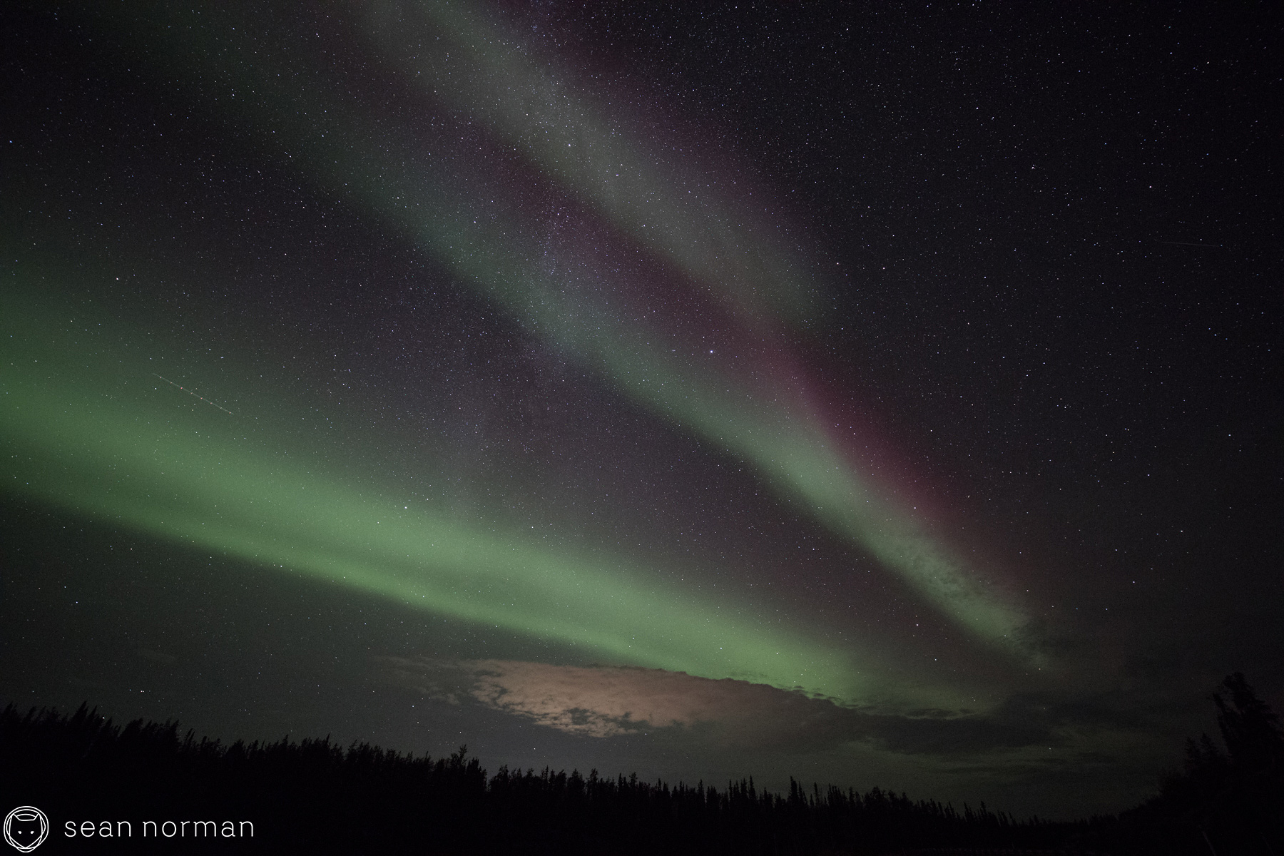Yellowknife Aurora Borealis - Sean Norman Blog - 3.jpg