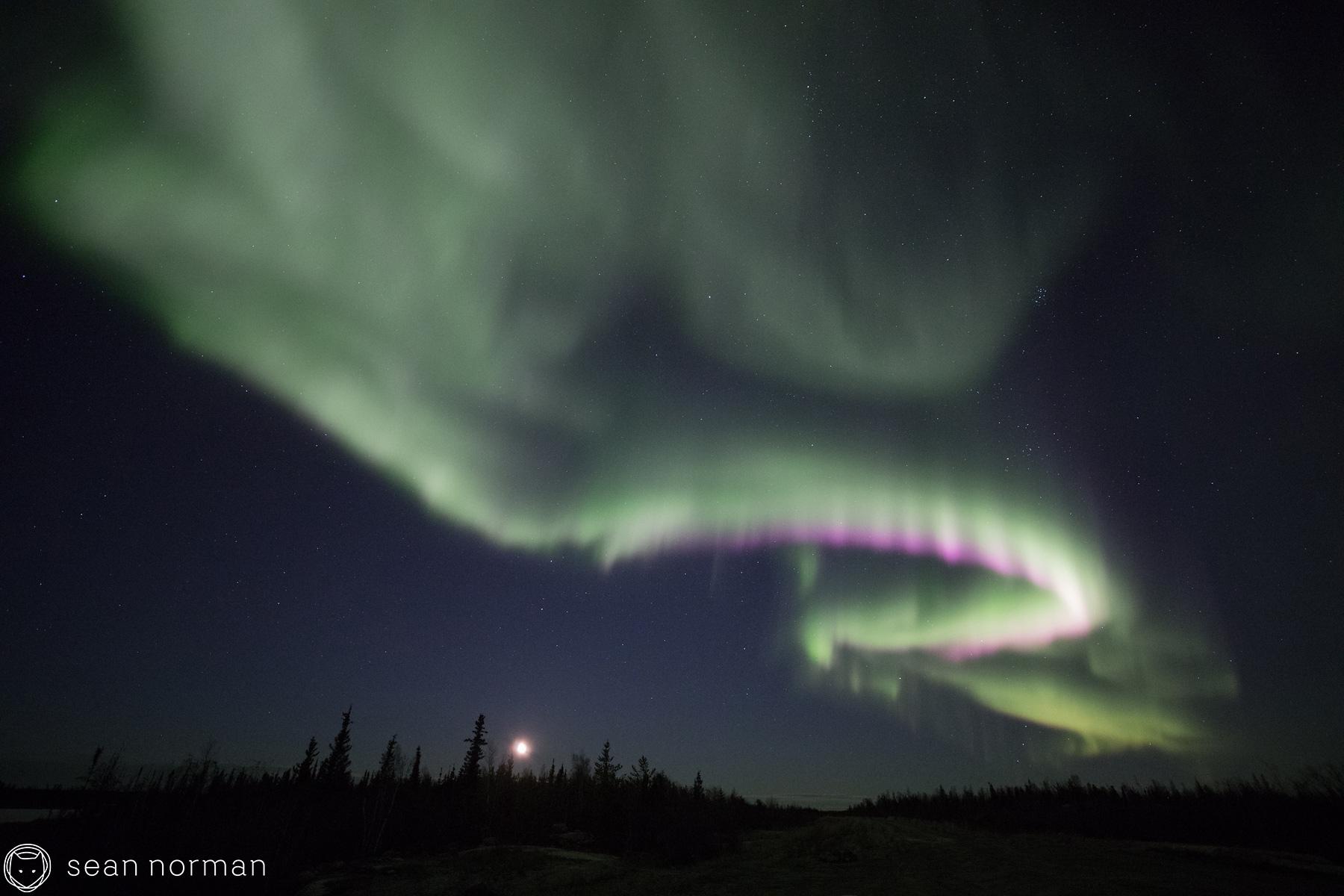Yellowknife Aurora Best Time - Sean Norman Guide - 9.jpg