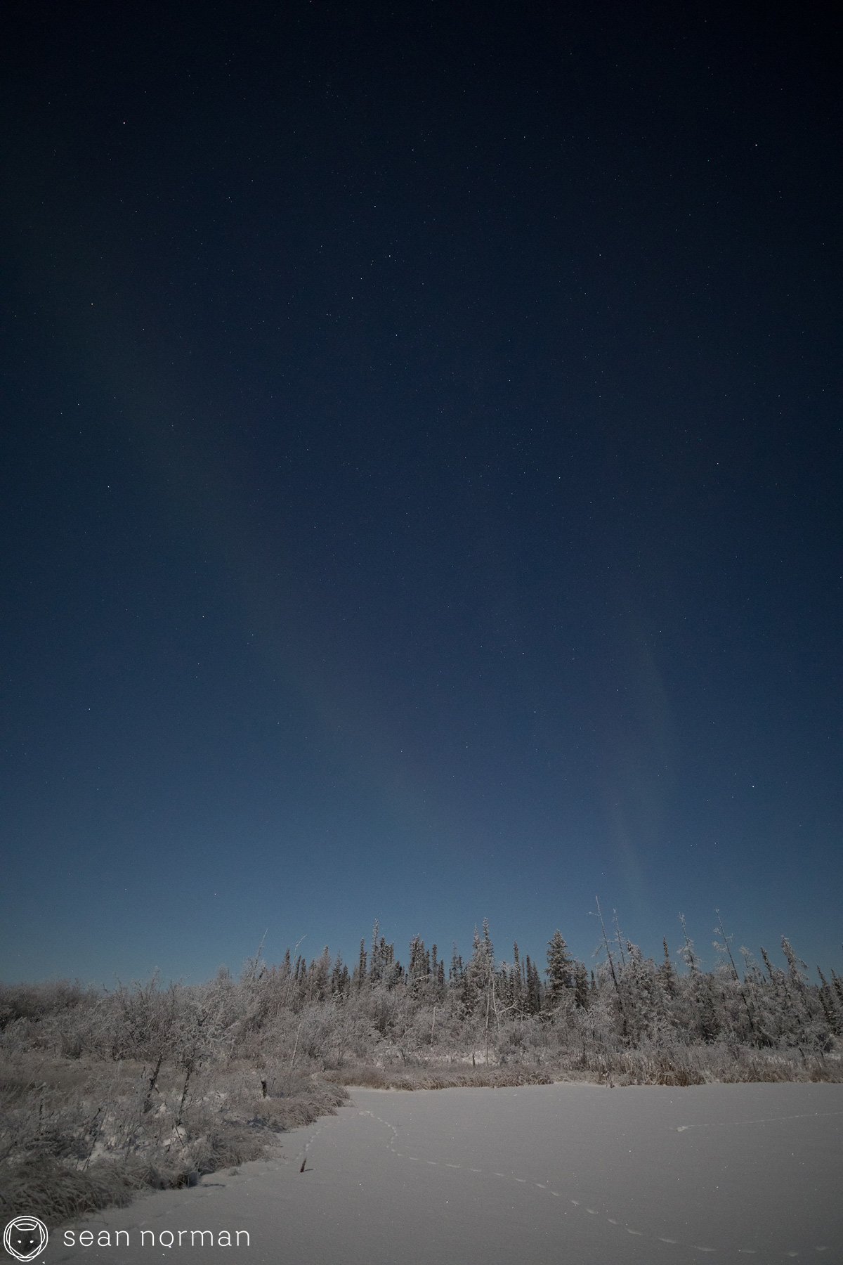 Yellowknife Aurora Chasing Tour - Sean Norman Blog - 1.jpg