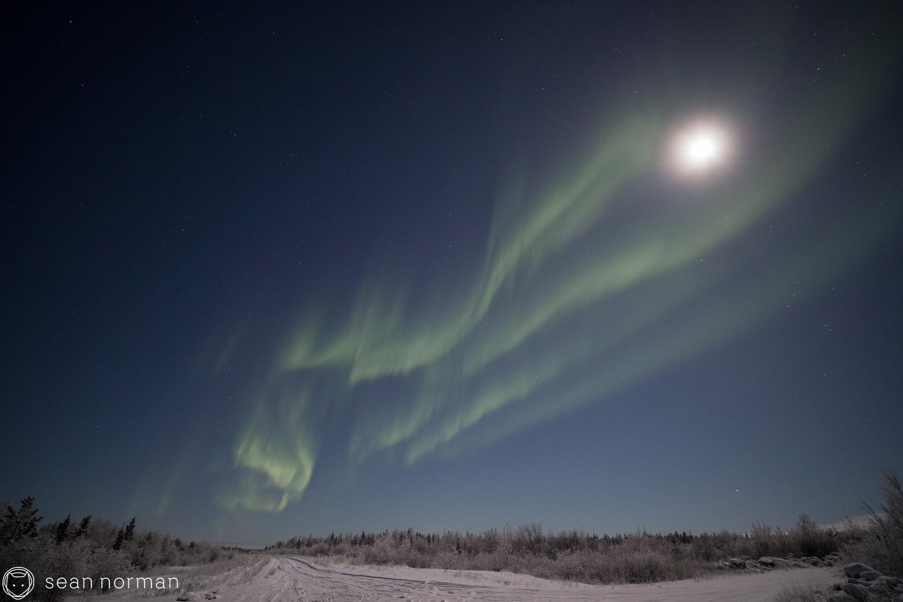 Yellowknife Aurora Chasing Tour - Sean Norman Blog - 3.jpg