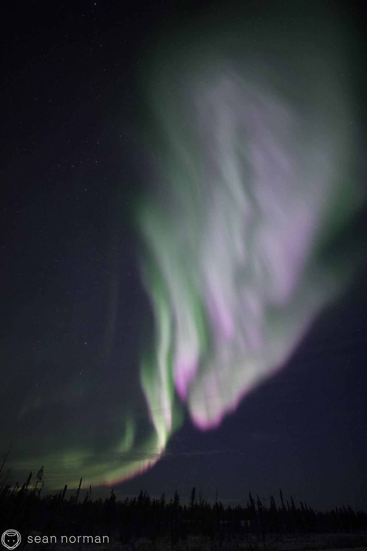 Yellowknife Aurora Tour - Sean Norman Aurora Chaser - 8.jpg