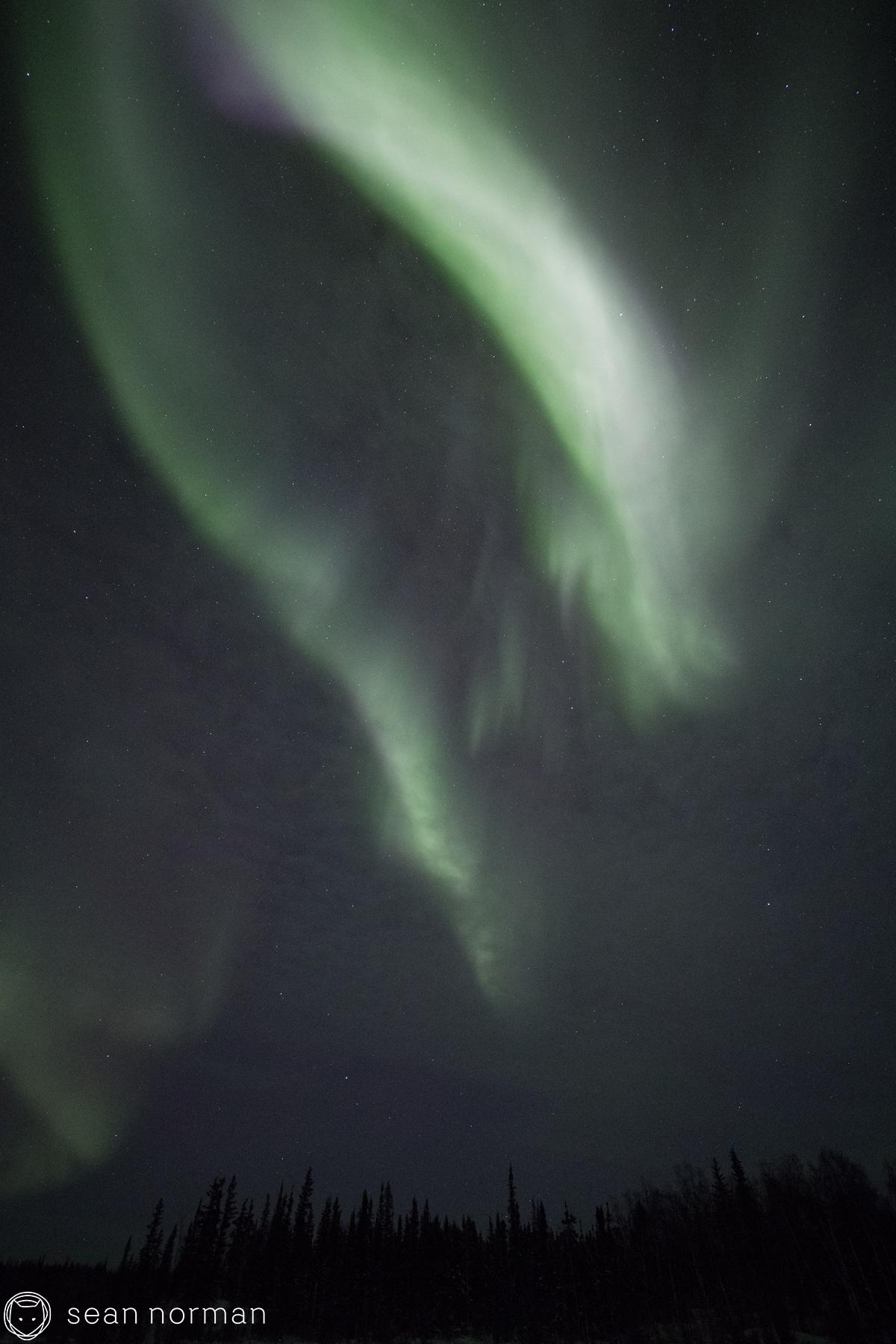 Yellowknife Northern Lights Blog - Sean Norman Aurora Tour - 4.jpg