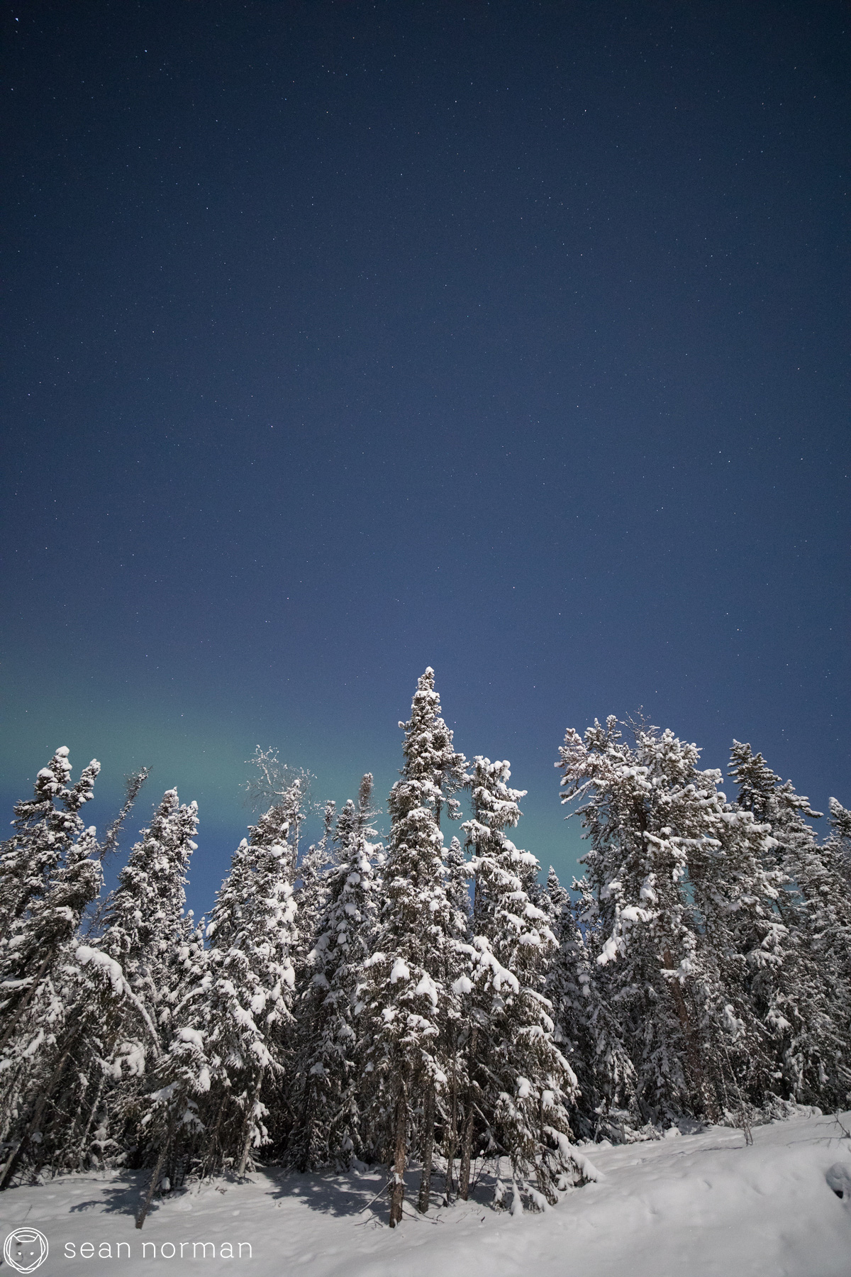 Sean Norman - Yellowknife Aurora Guide - Blog - 2.jpg