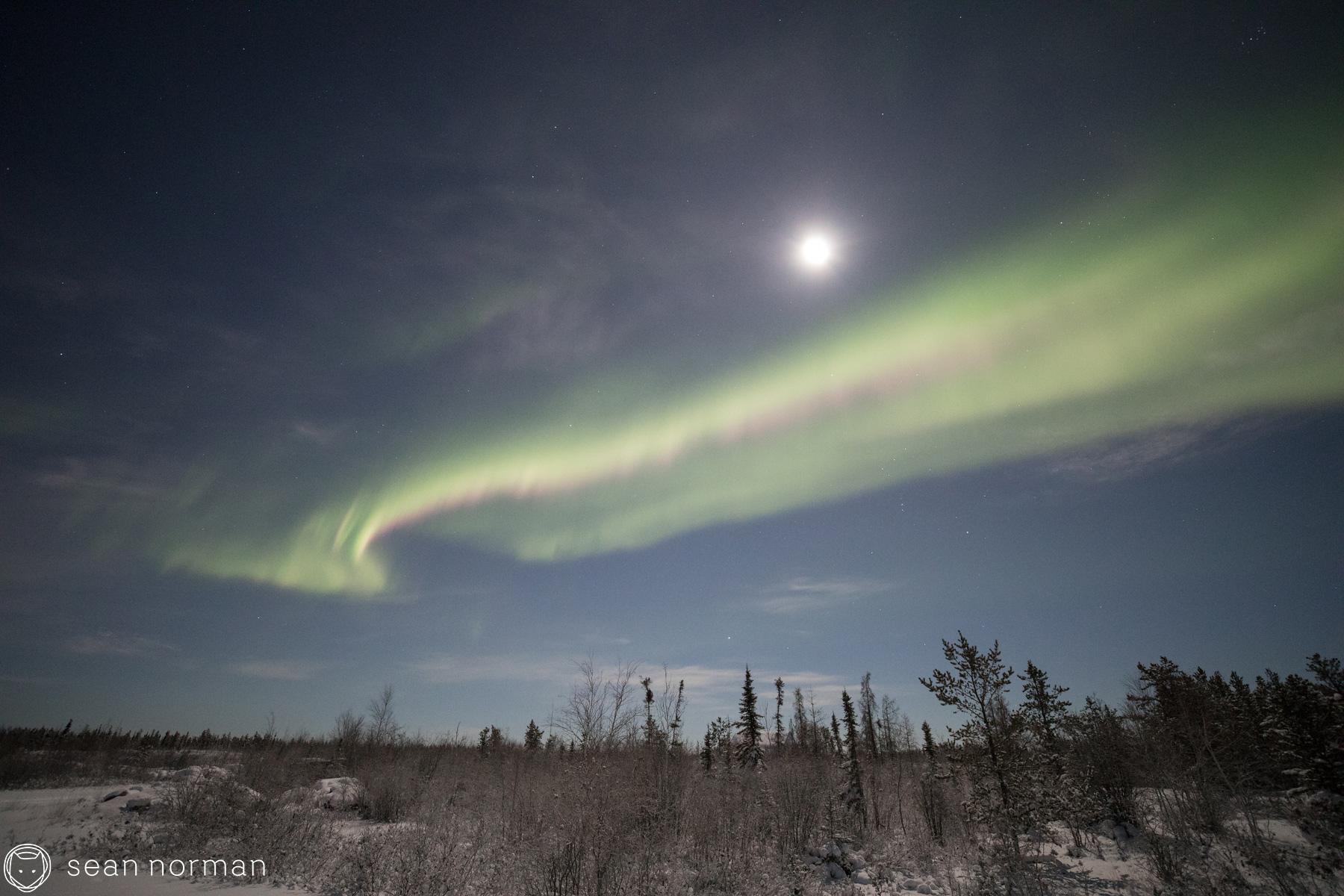 Yellowknife New Year's Eve - Aurora Chasing Tour - Sean Norman Blog - 6.jpg