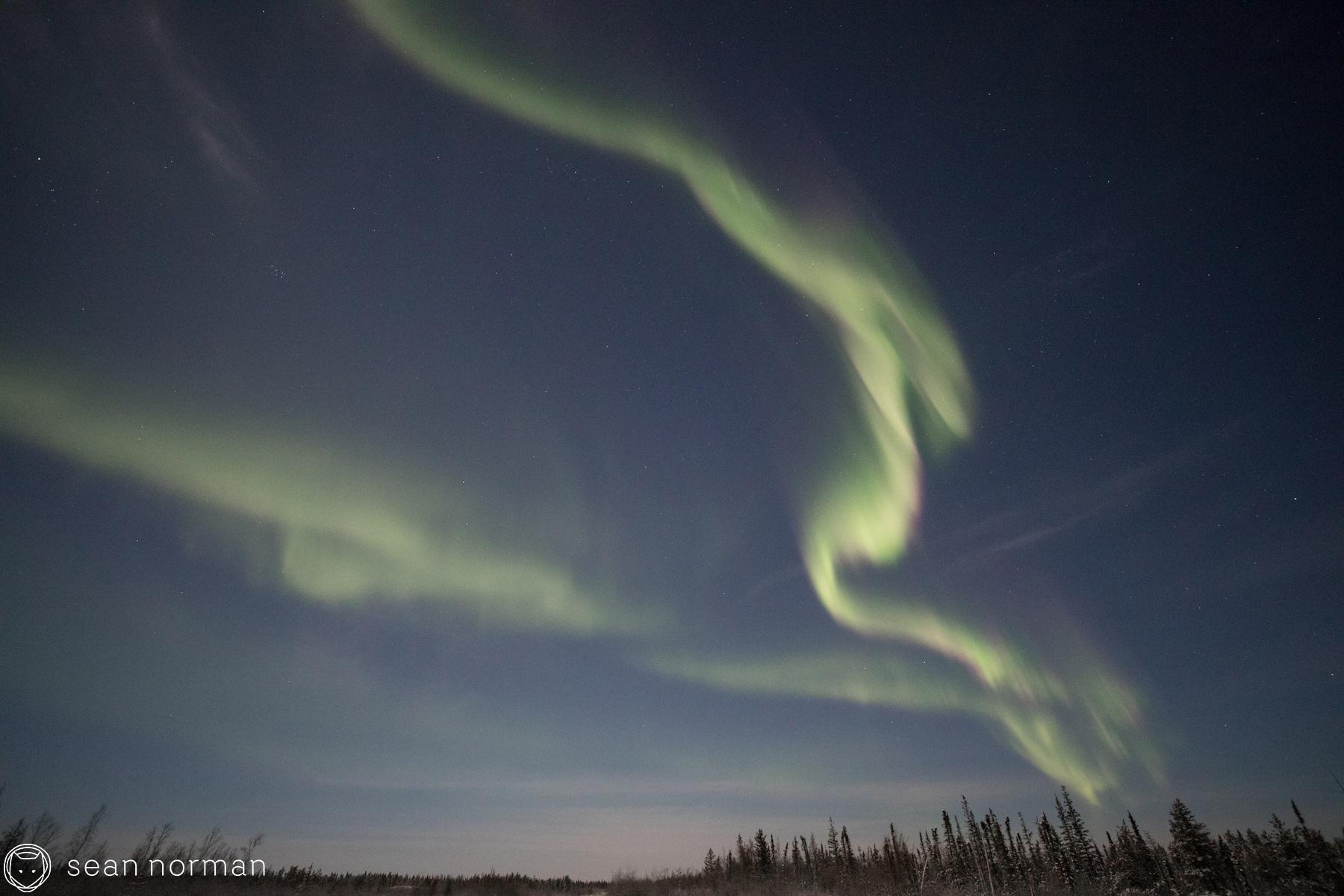 Yellowknife New Year's Eve - Aurora Chasing Tour - Sean Norman Blog - 8.jpg