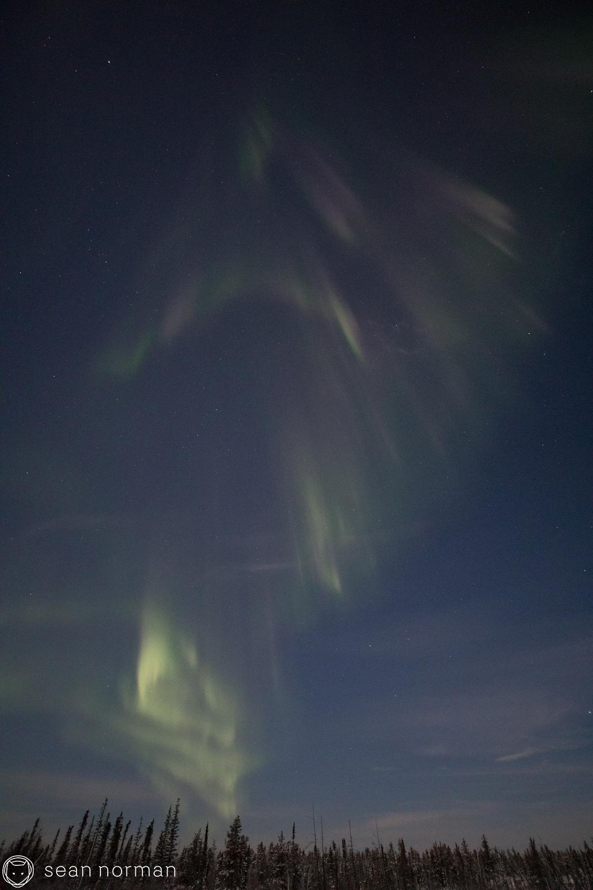 Yellowknife New Year's Eve - Aurora Chasing Tour - Sean Norman Blog - 9.jpg
