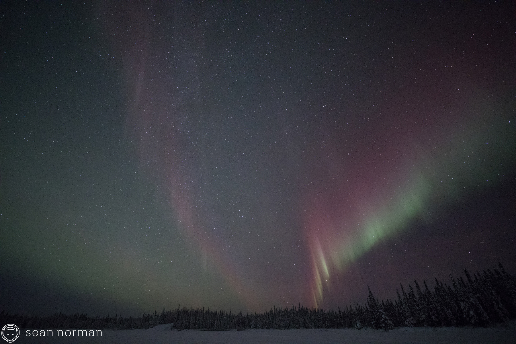 Yellowknife Aurora Chasing Tour - Sean Norman Photo Blog - 3.jpg