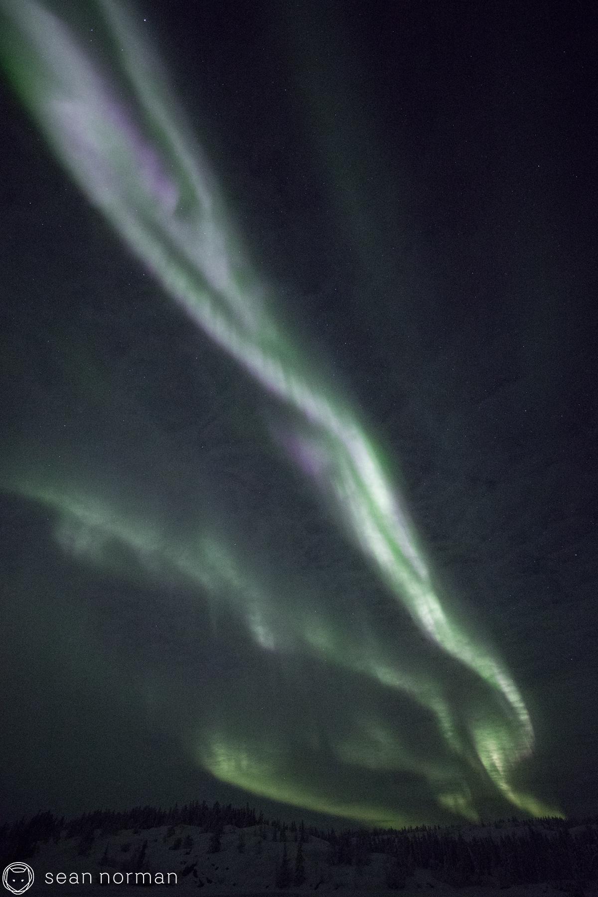 Yellowknife Aurora Chasing Tour - Sean Norman Photo Blog - 7.jpg