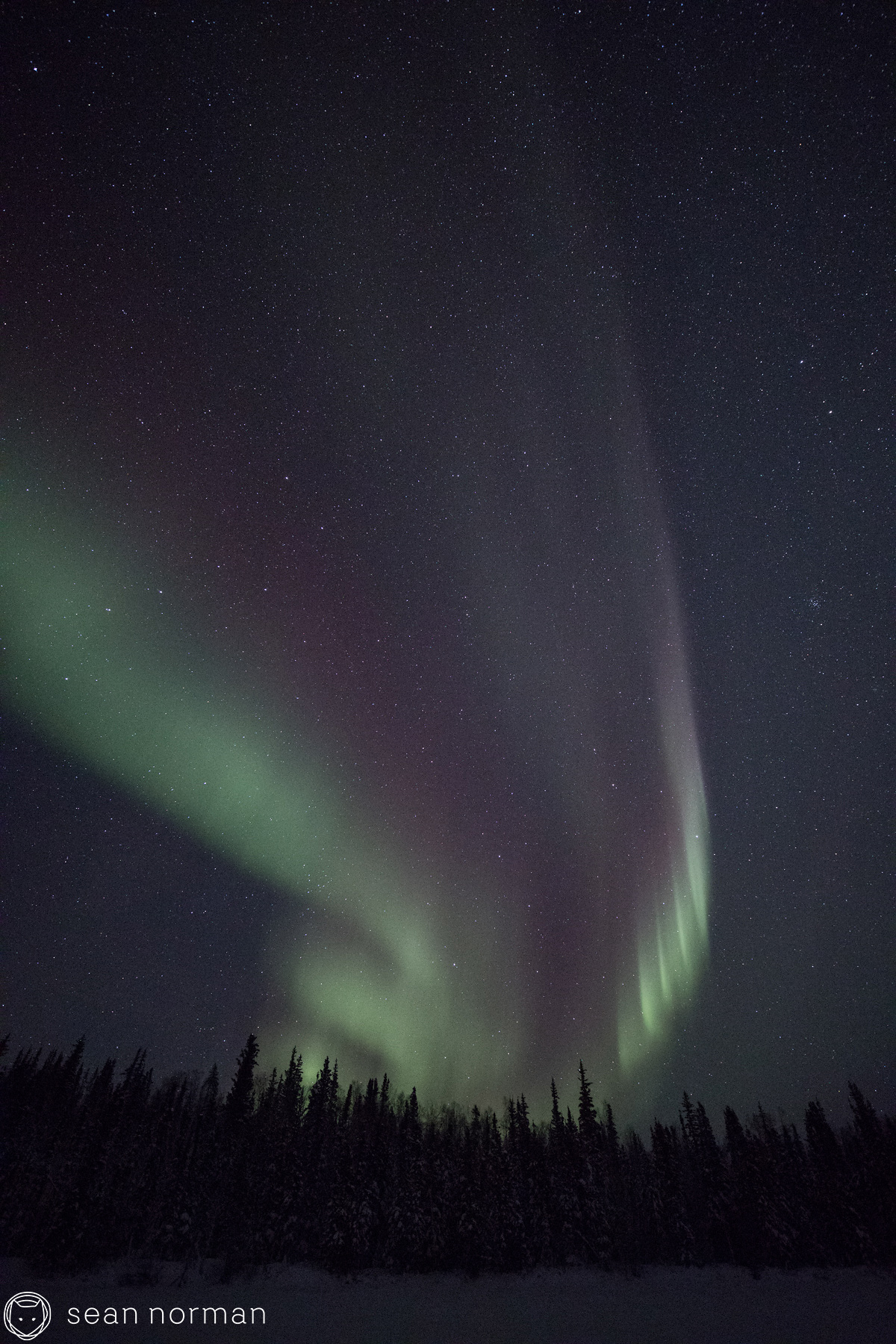Sean Norman Yellowknife Aurora Chaser - Northern Light Photography - 3.jpg