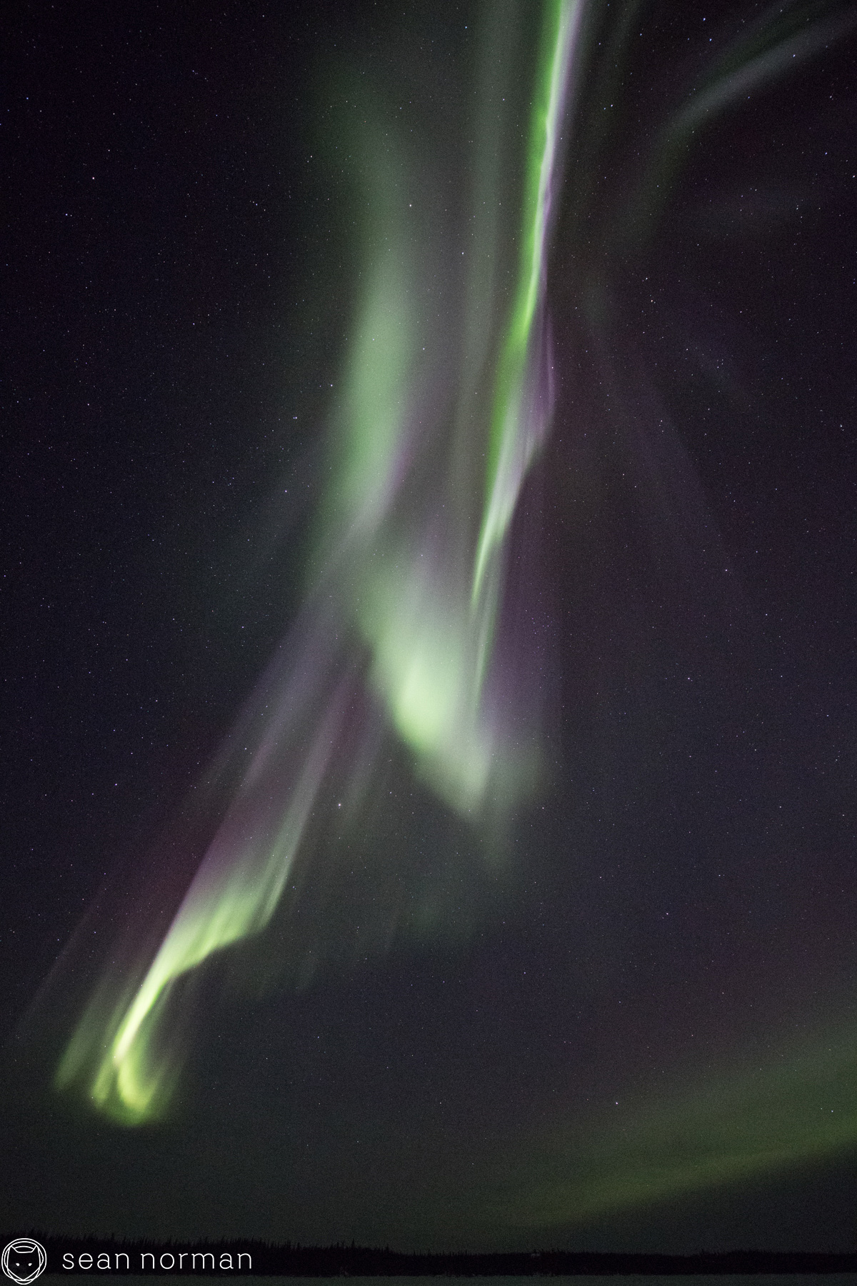 Sean Norman - Yellowknife Aurora Chaser - Tour Guide - 5.jpg