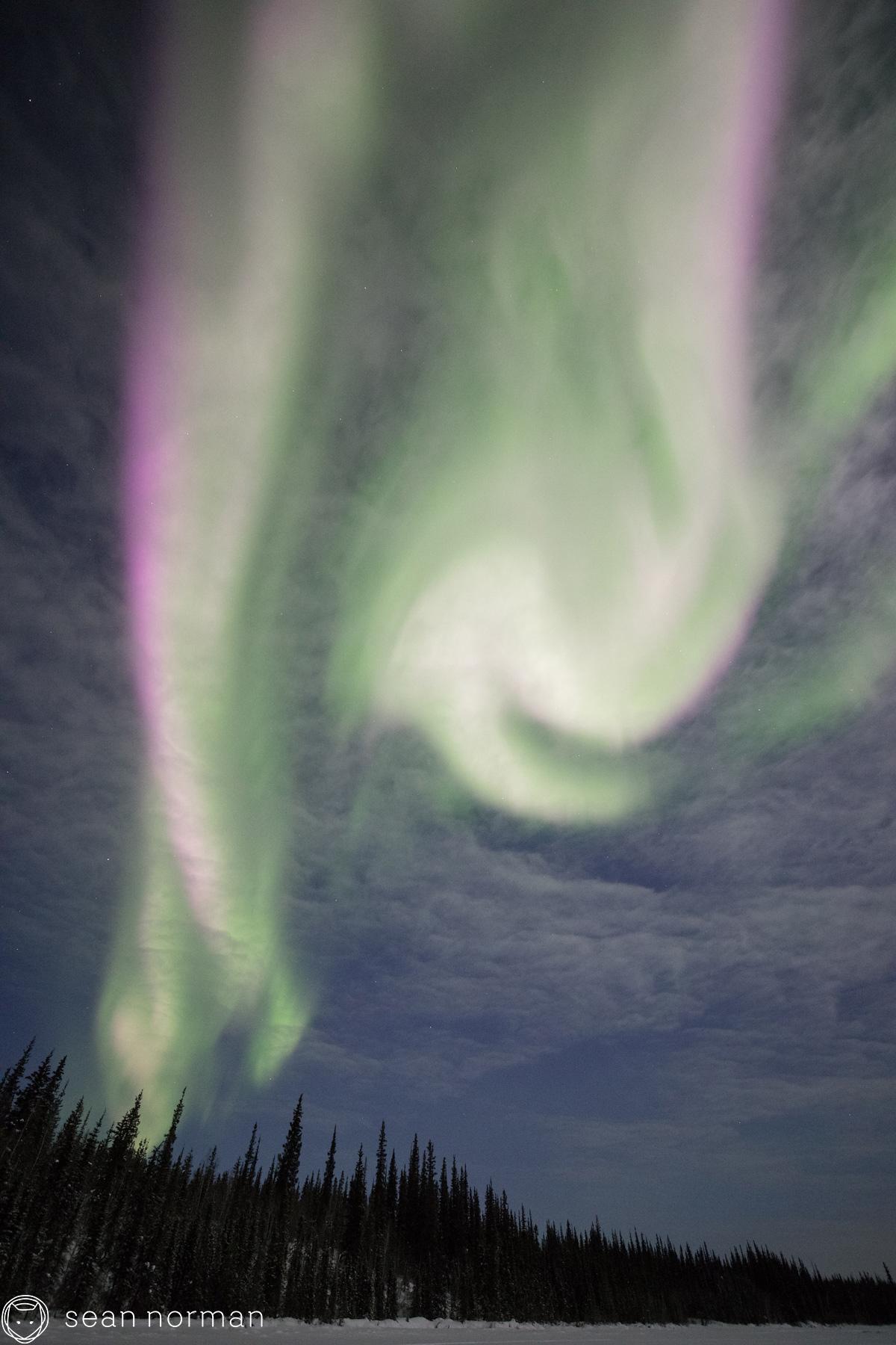 Yellowknife Aurora Borealis Chaser - Canada Aurora Tour - 3.jpg
