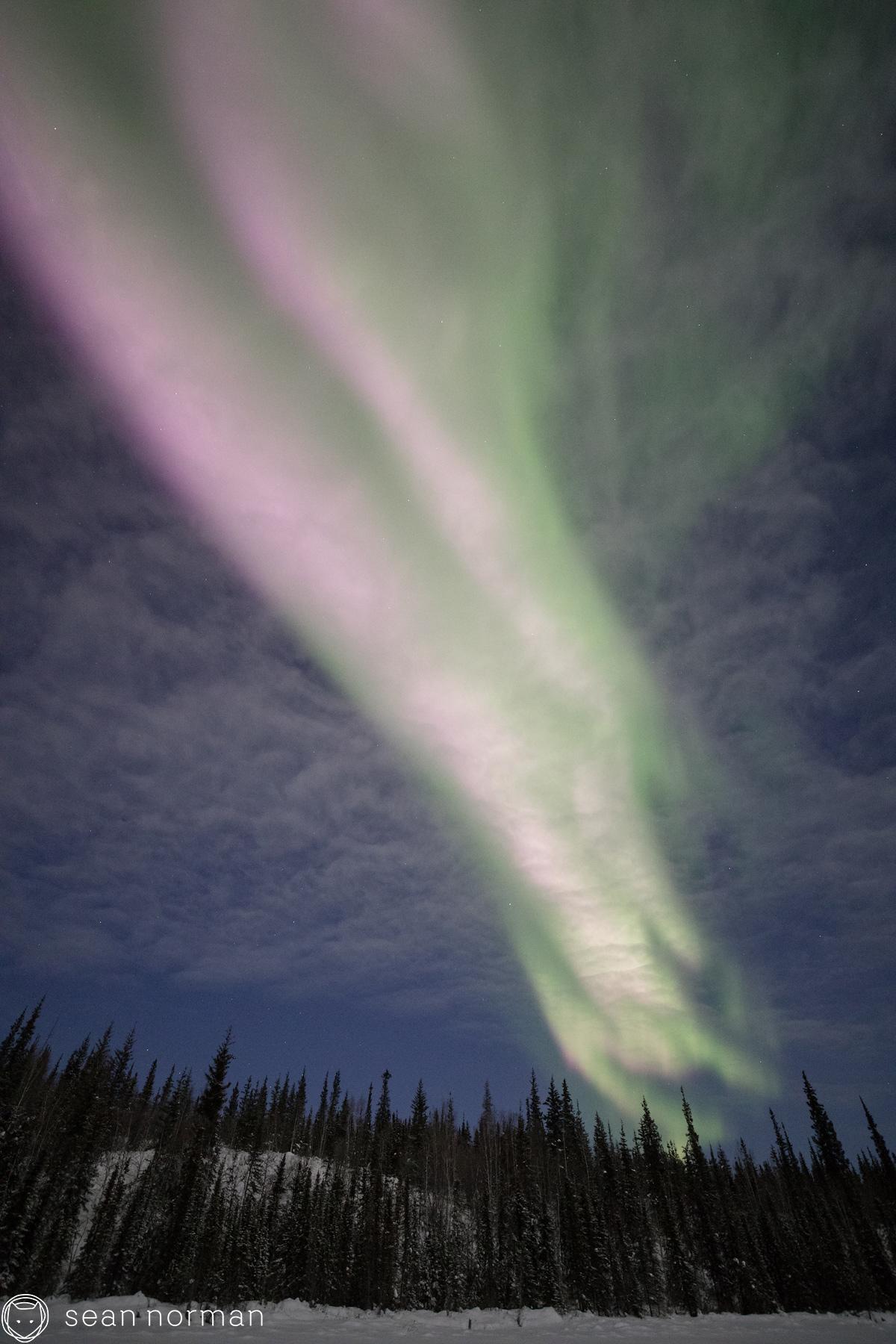 Yellowknife Aurora Borealis Chaser - Canada Aurora Tour - 4.jpg