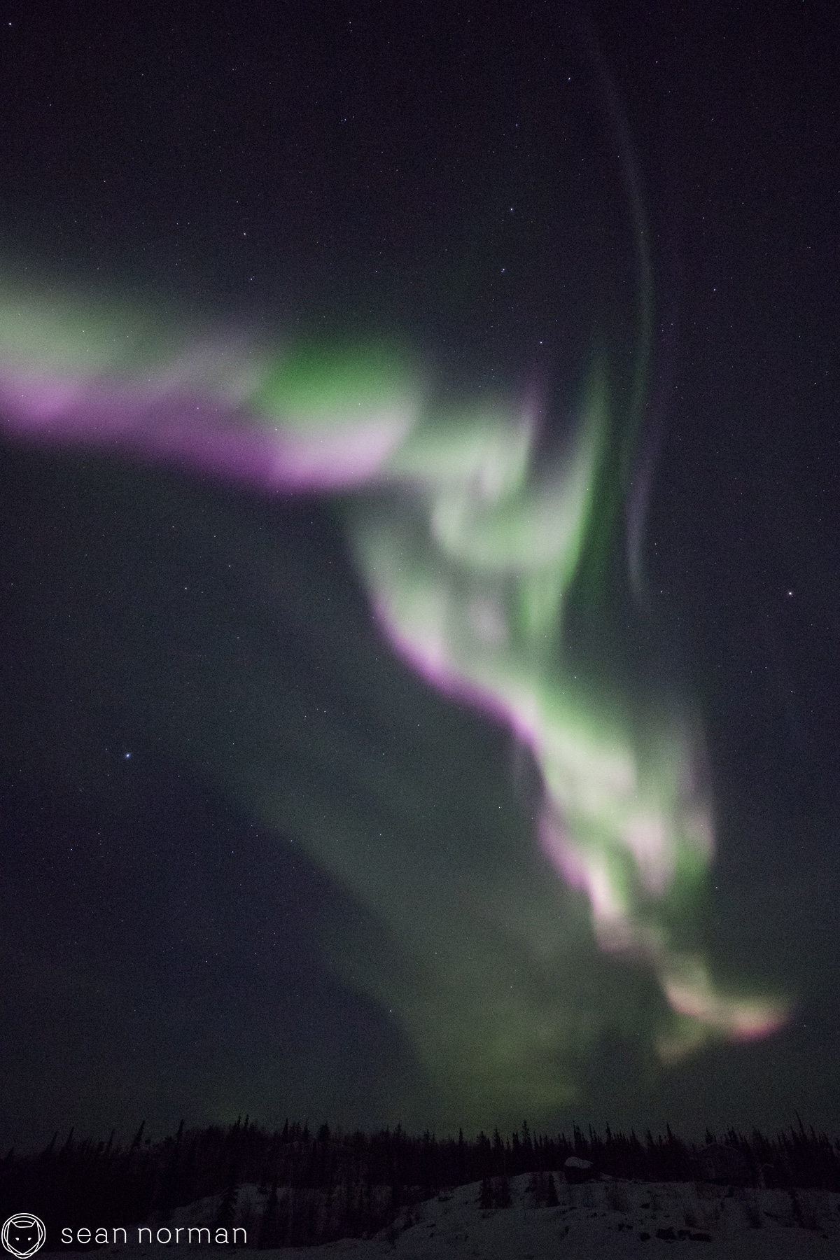 Yellowknife Aurora Hunting Tour - 7.jpg