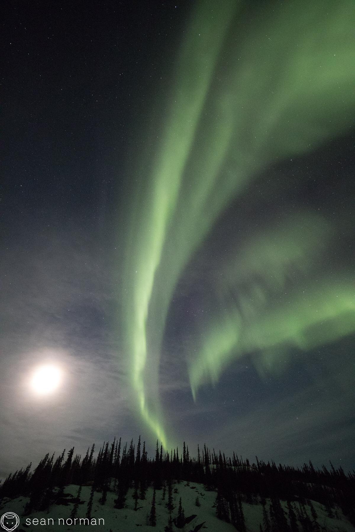 Sean Norman - Yellowknife Aurora Guide - 6.jpg