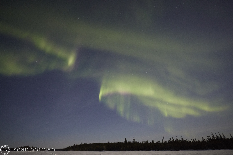 Yellowknife Aurora Guide - Aurora Hunting Tour - 12.jpg