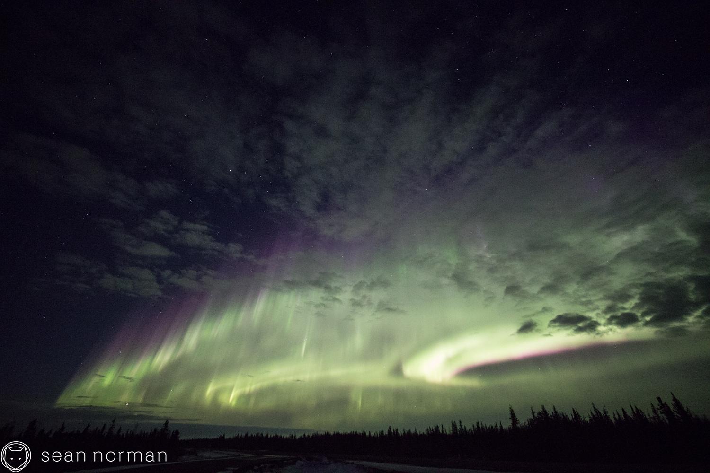 Yellowknife Aurora Blog - Aurora Hunting Tour - 4.jpg