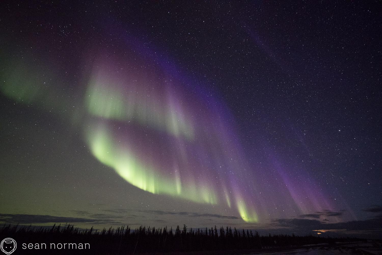 Yellowknife Aurora Blog - Aurora Hunting Tour - 11.jpg