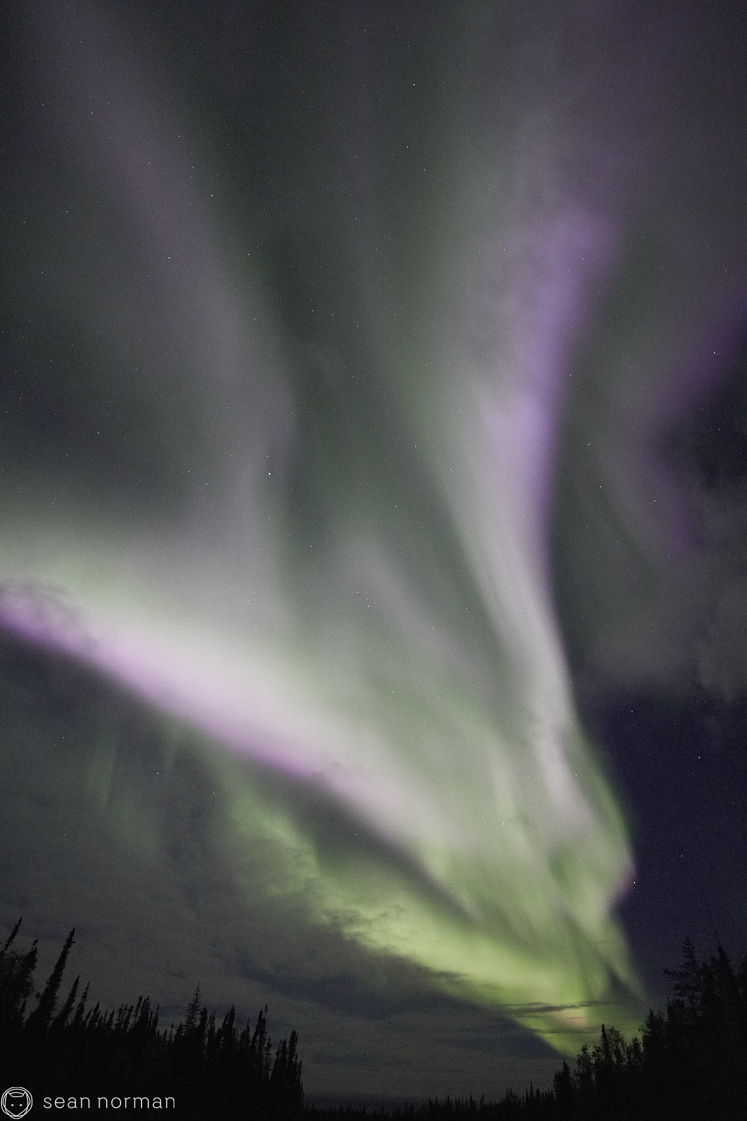 Yellowknife Aurora Tour - Northern Lights Yellowknife - 06.jpg