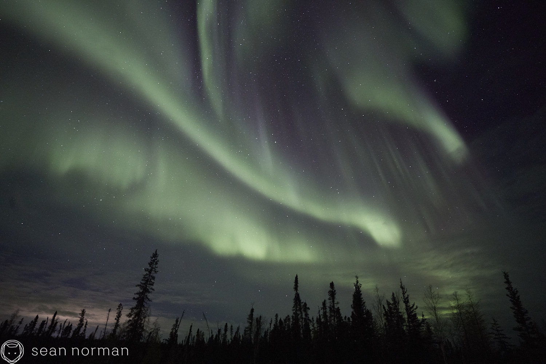 Yellowknife Aurora Tour - Canada Northern Lights Guide Photographer - 2.jpg