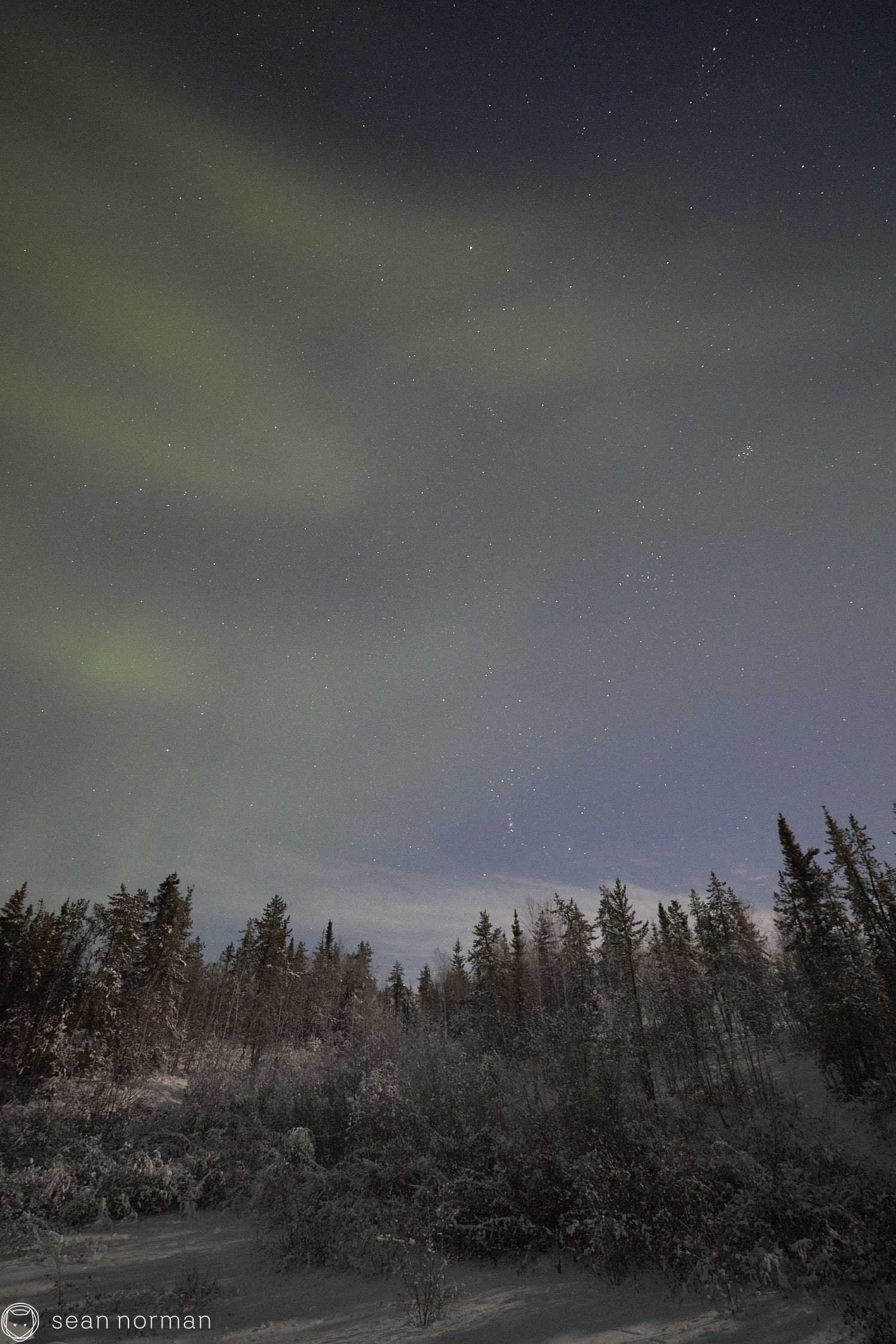 Sean Norman - Yellowknife Aurora Chasing - Northern Lights Tour Guide - 4.jpg