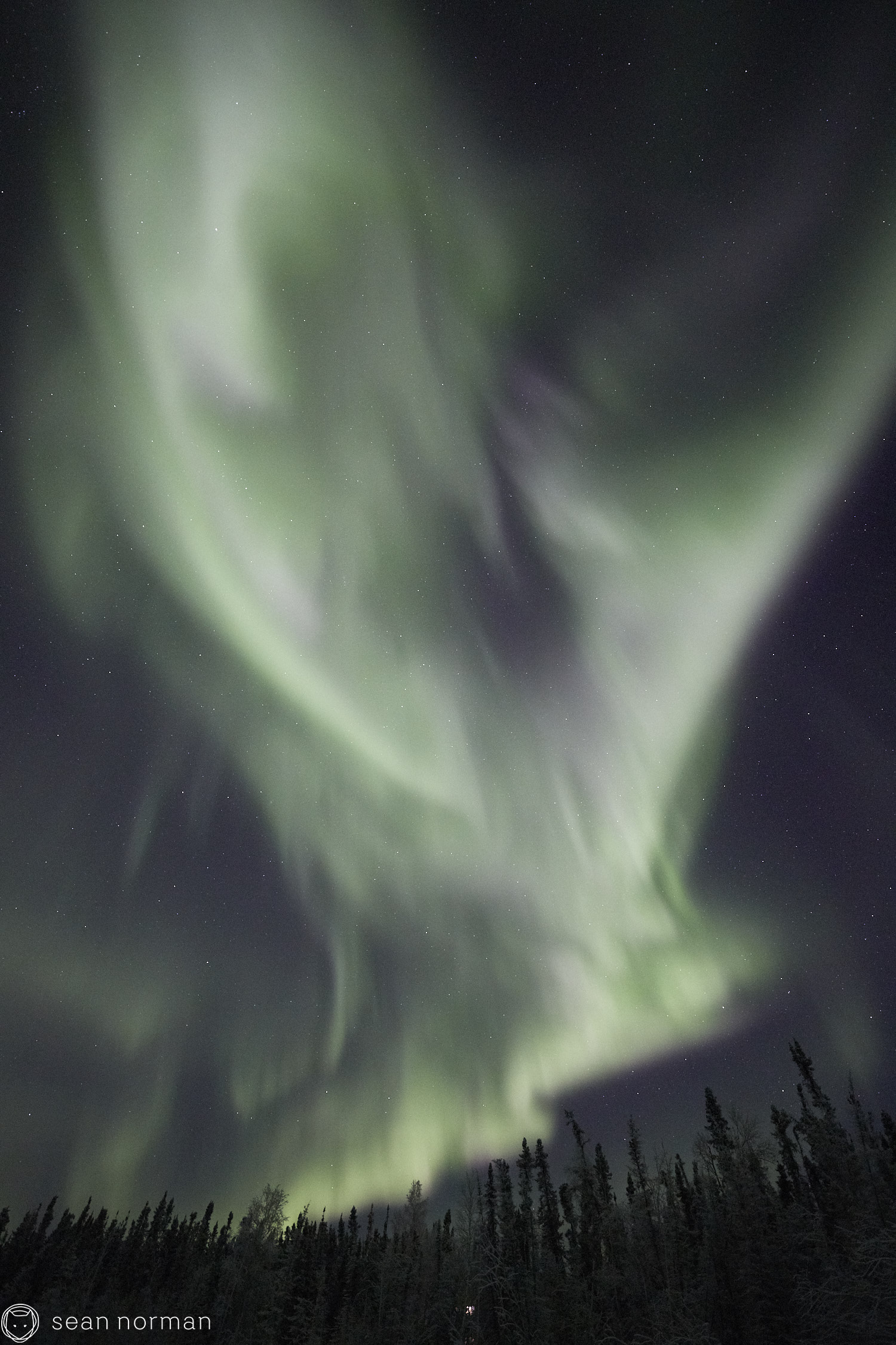 Sean Norman - Yellowknife Aurora Chasing - Northern Lights Tour Guide - 2.jpg