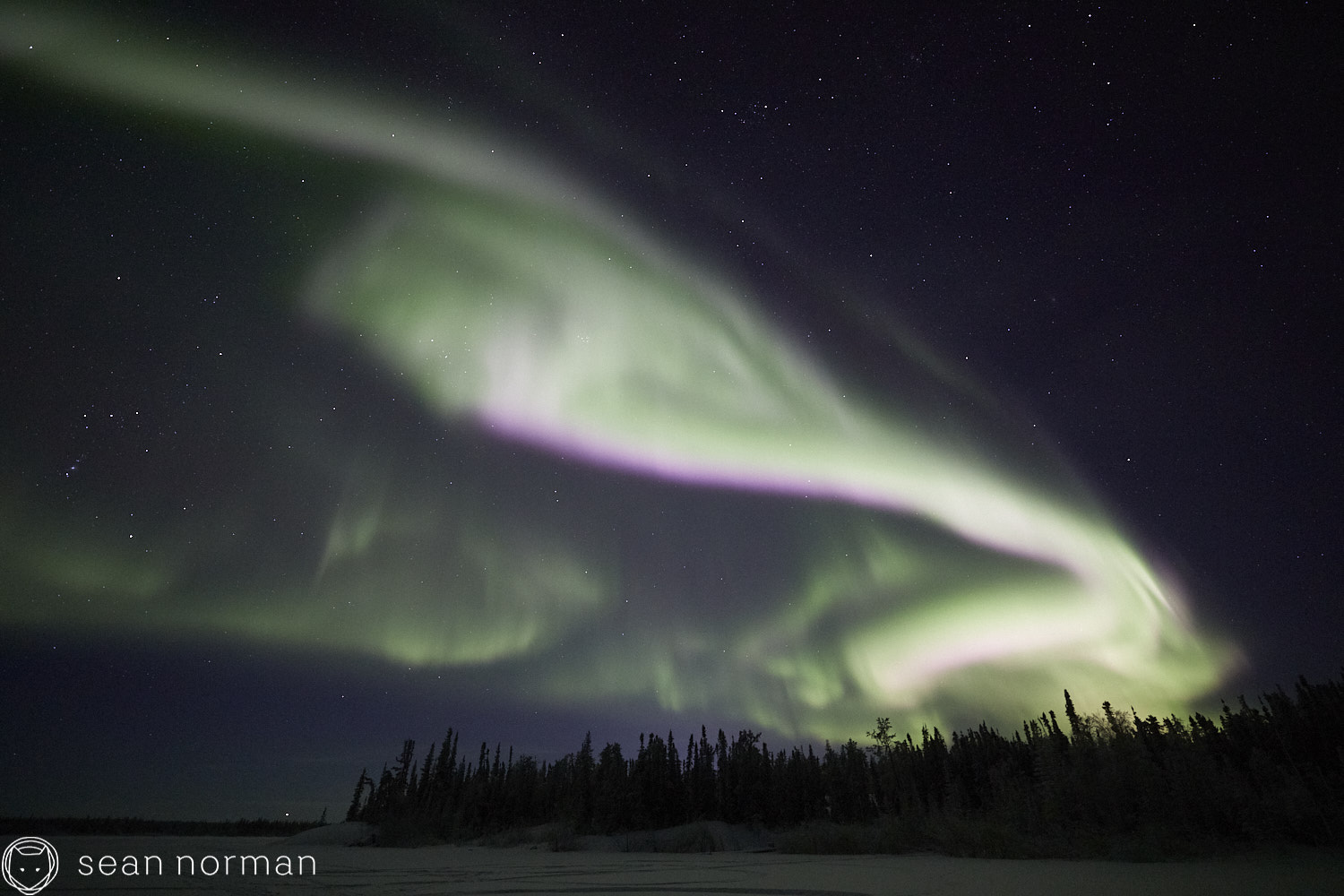 Sean Norman - Yellowknife Aurora Chasing - Northern Lights Tour Guide -.jpg
