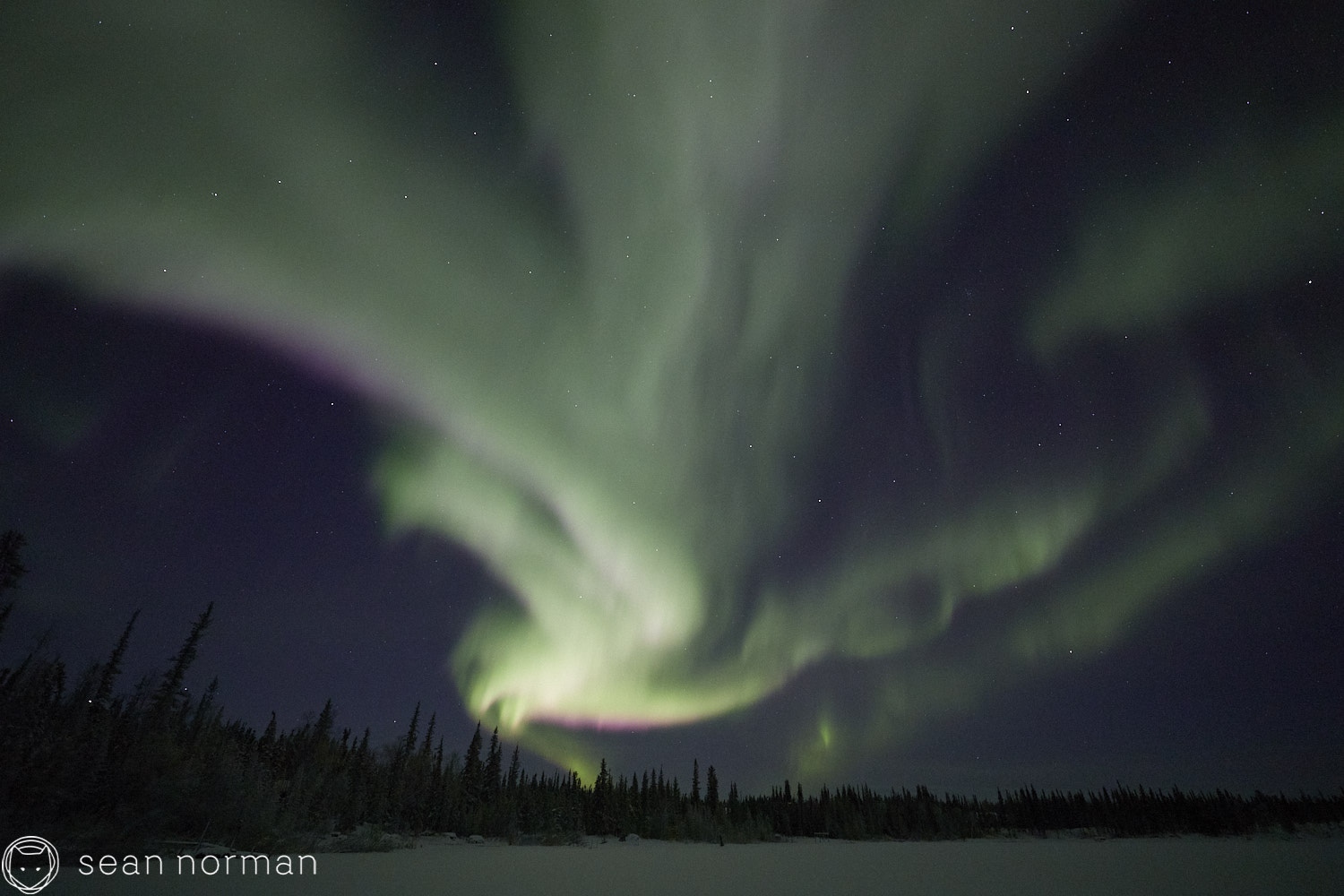 Sean Norman - Yellowknife Aurora Hunting Tour - Northern Lights Tour Guide - 3.jpg