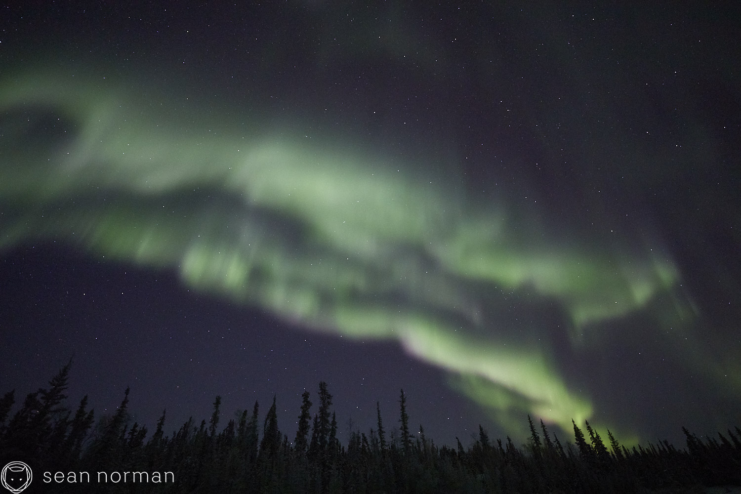 Sean Norman - Yellowknife Aurora Hunting Tour - Northern Lights Tour Guide - 6.jpg