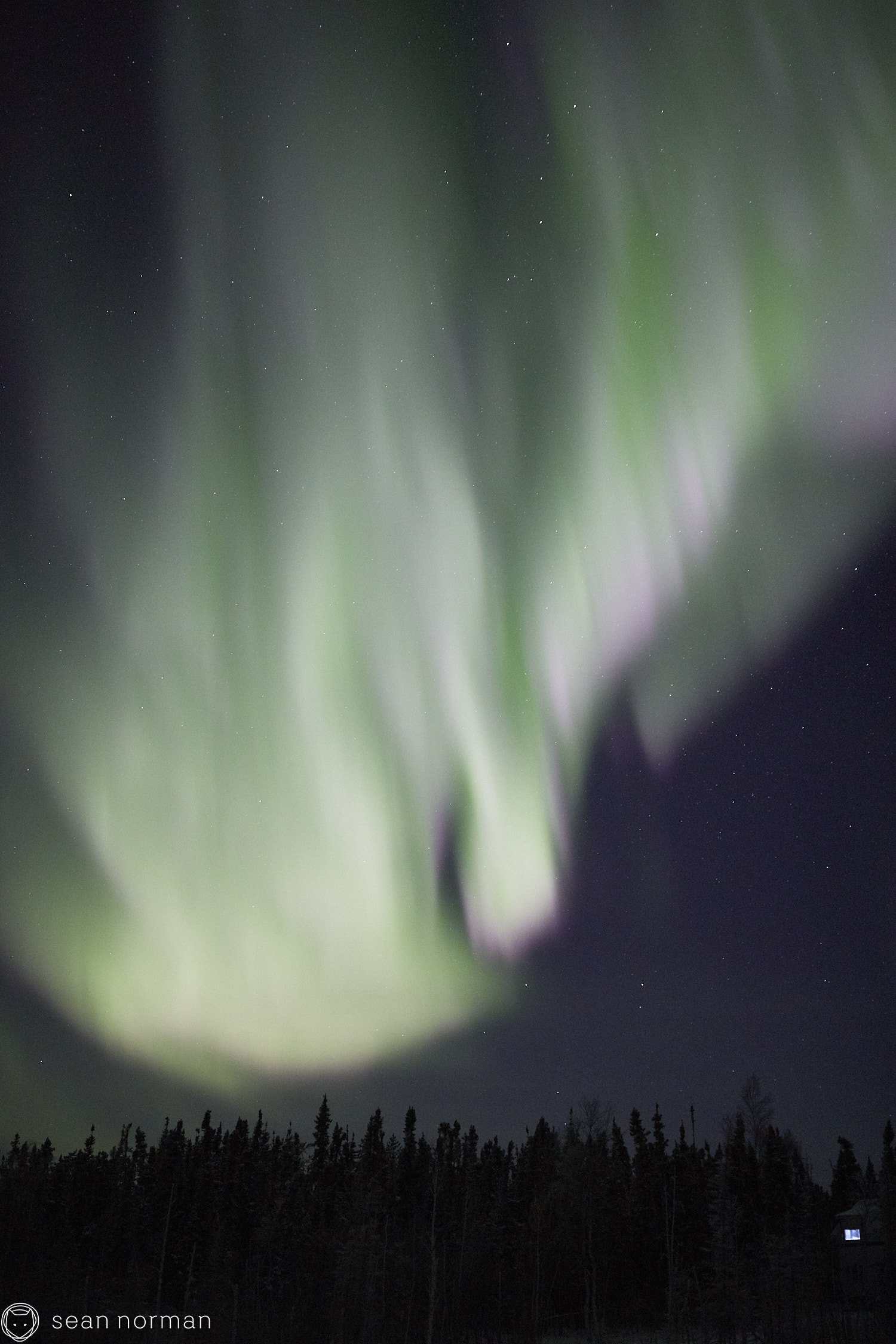 Sean Norman - Yellowknife Aurora Hunting Tour - Northern Lights Tour Guide - 4.jpg
