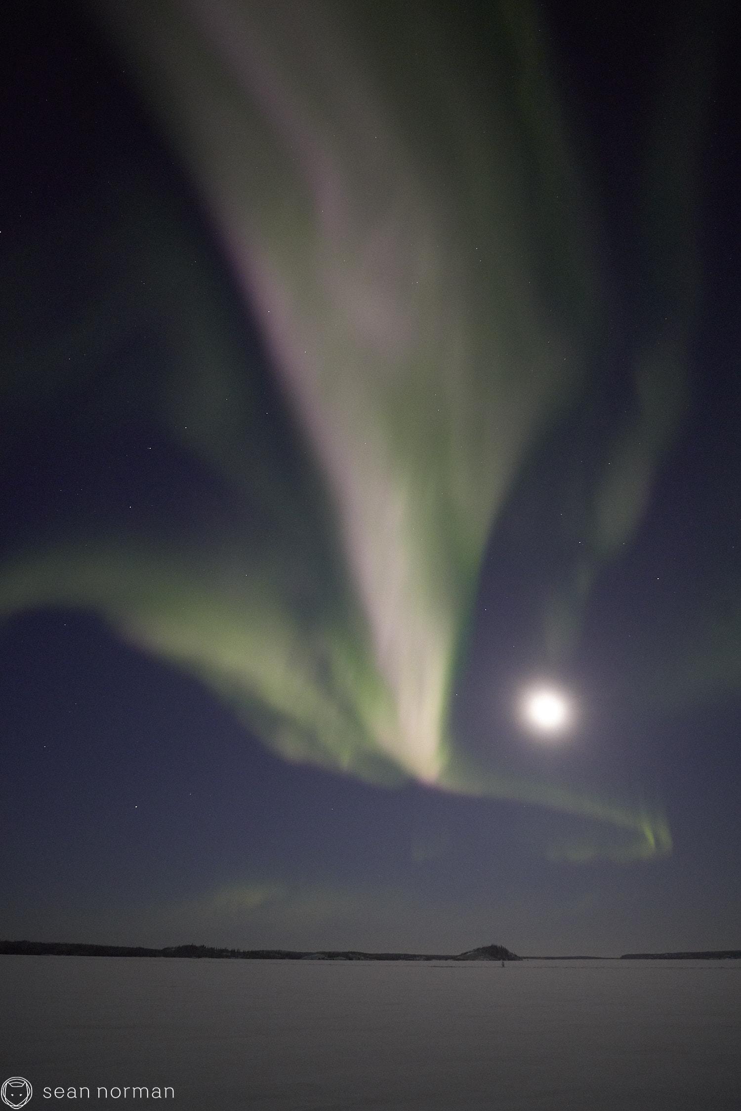 Yellowknife Aurora Tour - Northern Lights Canada - Sean Norman Guide - 3.jpg