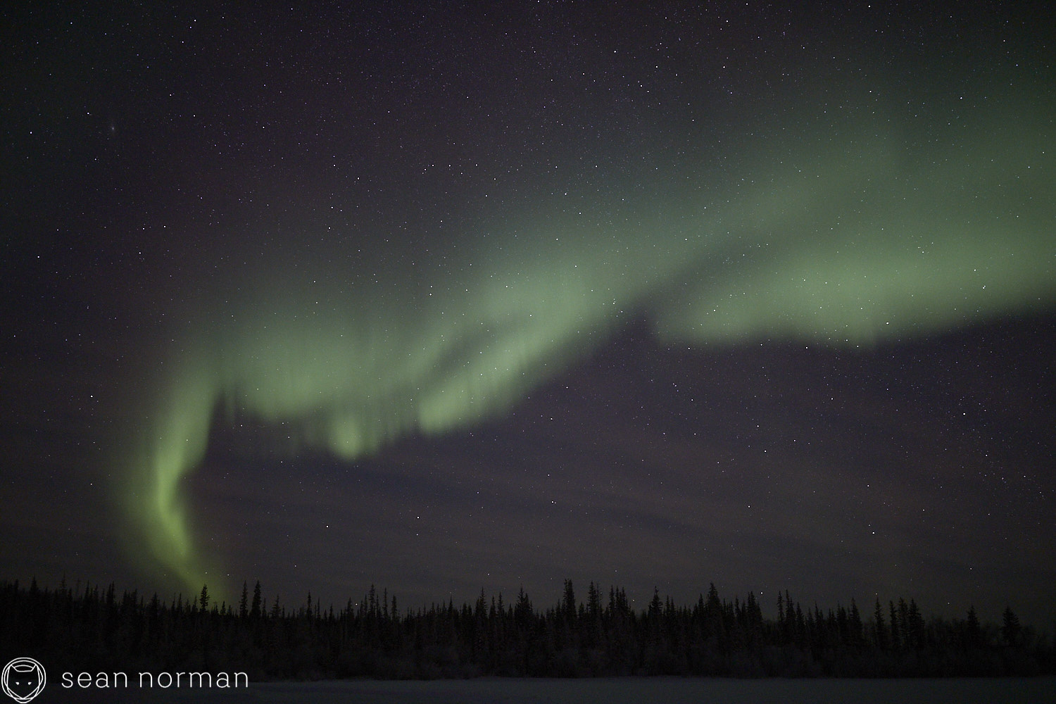 Sean Norman - Yellowknife Aurora Chaser - Northern Lights Guide - 13.jpg