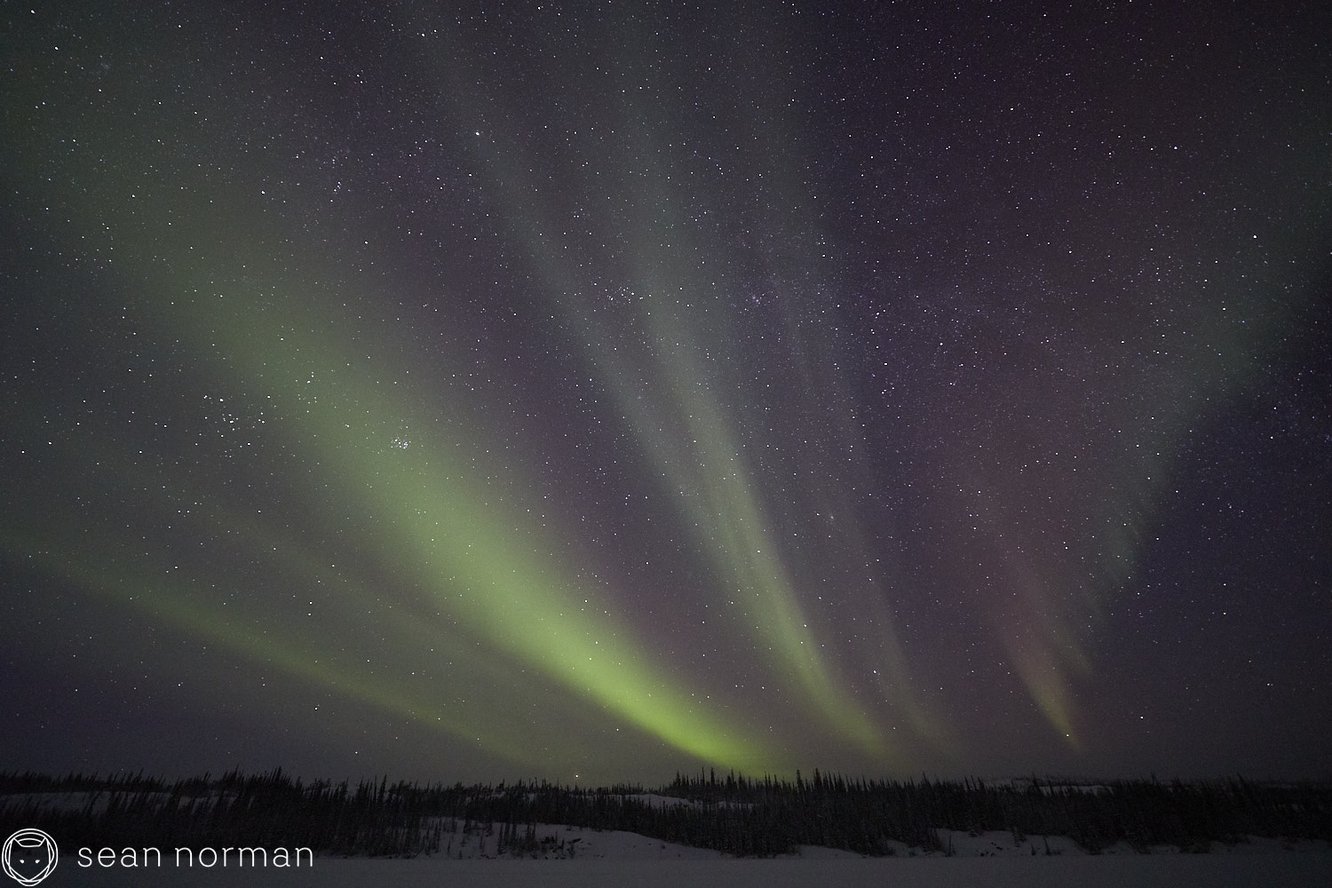 Yellowknife Aurora Guide - Northern Lights Chasing Tour Canada - 02.jpg