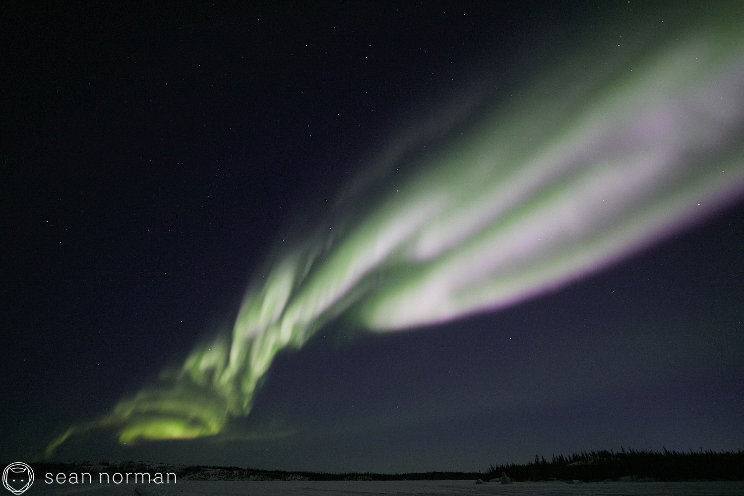 Yellowknife Aurora Tour Guide - Northern Light Photography - Aurora Chaser - 07.jpg