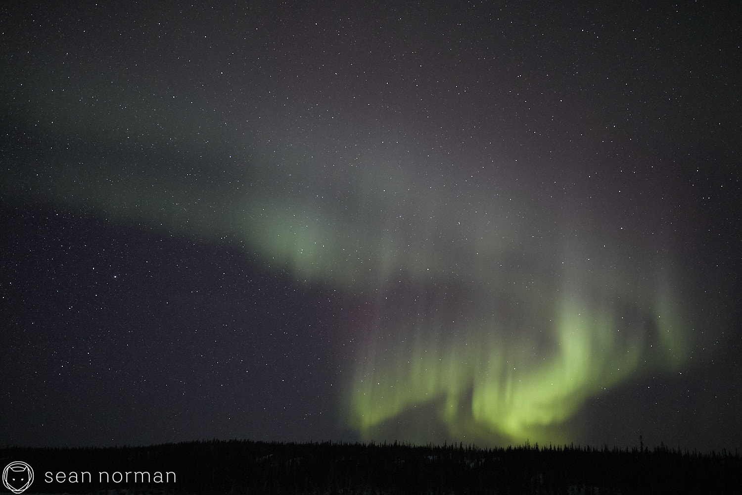 Yellowknife Aurora Tour Guide - Northern Light Photography - Aurora Chaser - 19.jpg