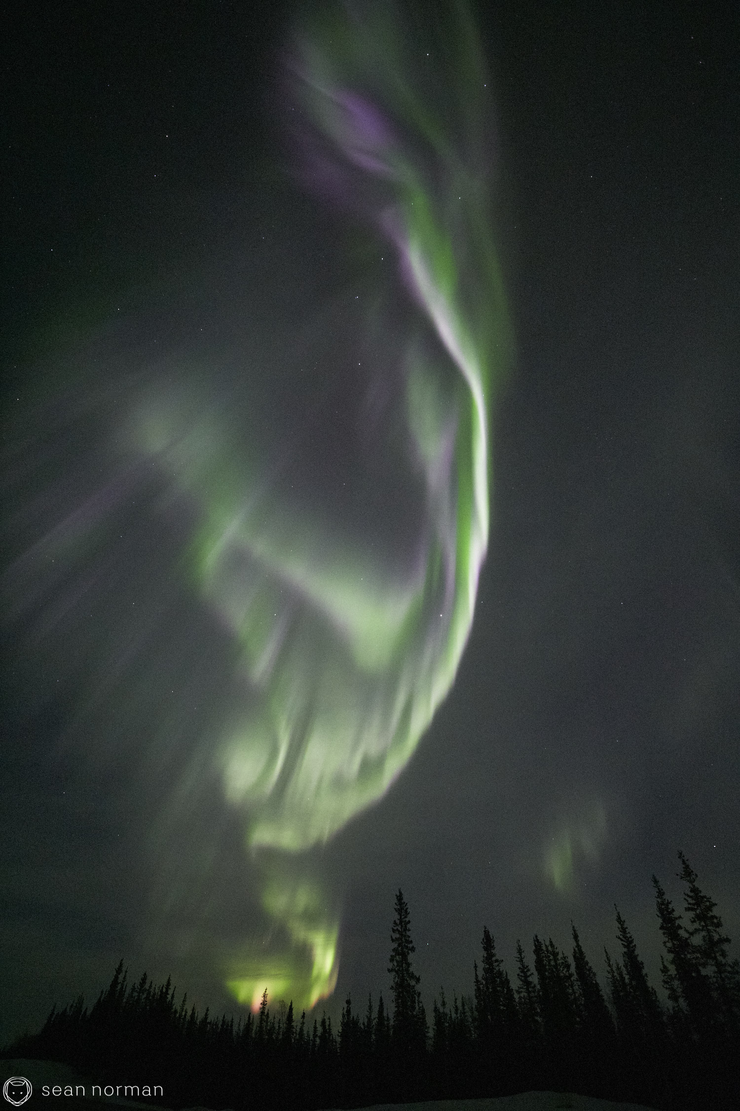 Yellowknife Aurora Tour - Northern Lights Canada - 06.jpg